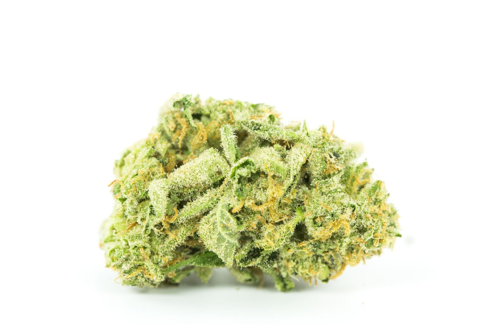 Kraken Weed; Kraken Cannabis Strain; Kraken Indica Marijuana Strain