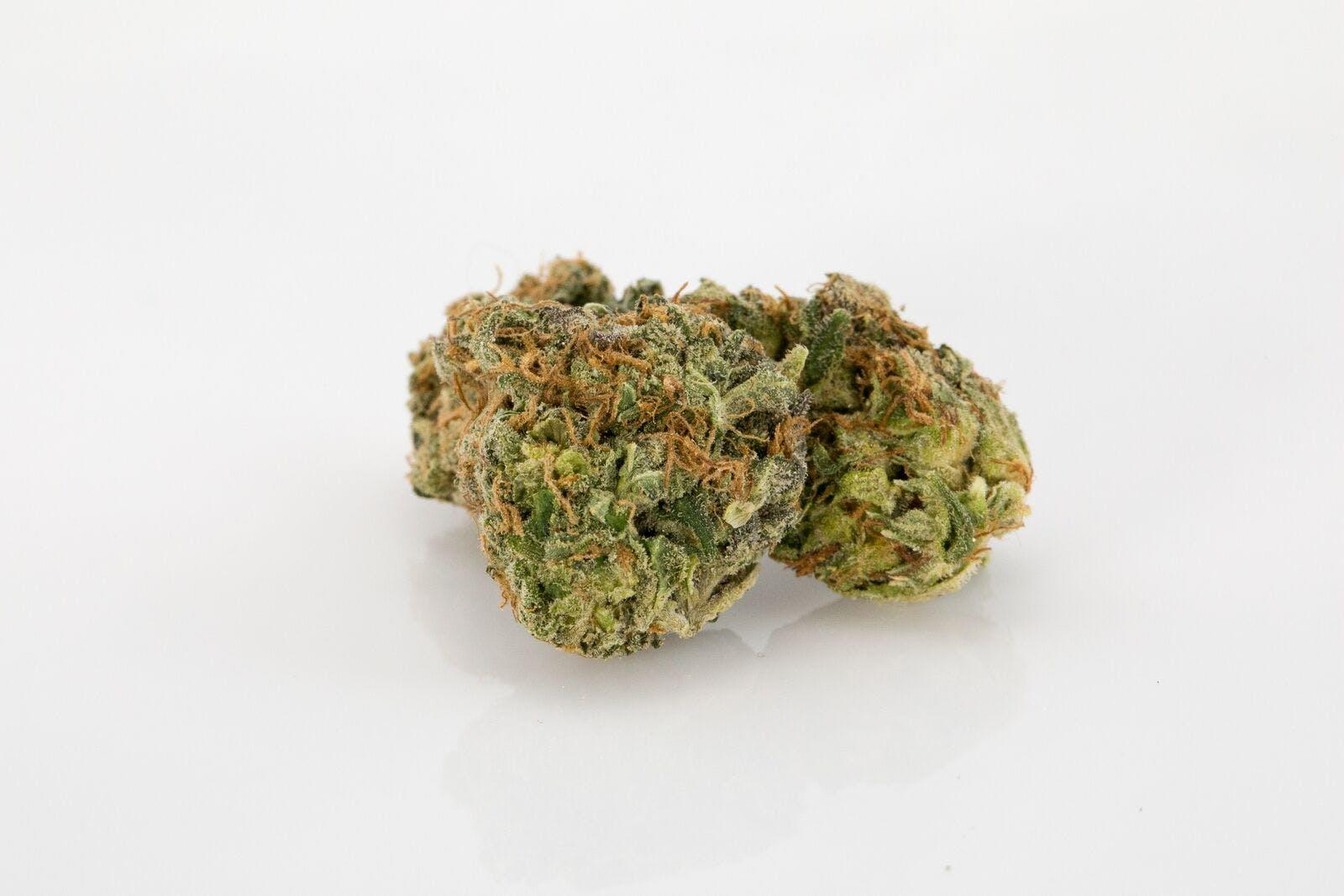 LA Woman Weed; LA Woman Cannabis Strain; LA Woman Hybrid Marijuana Strain