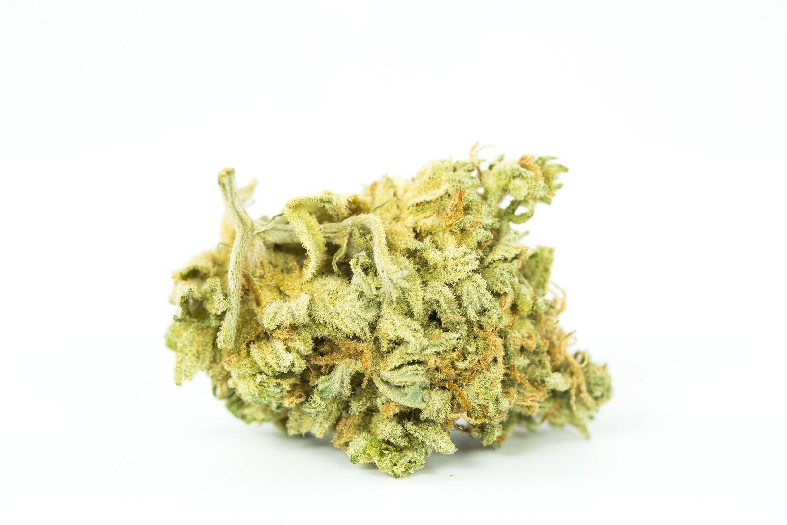 Medibud Weed; Medibud Cannabis Strain; Medibud Hybrid Marijuana Strain