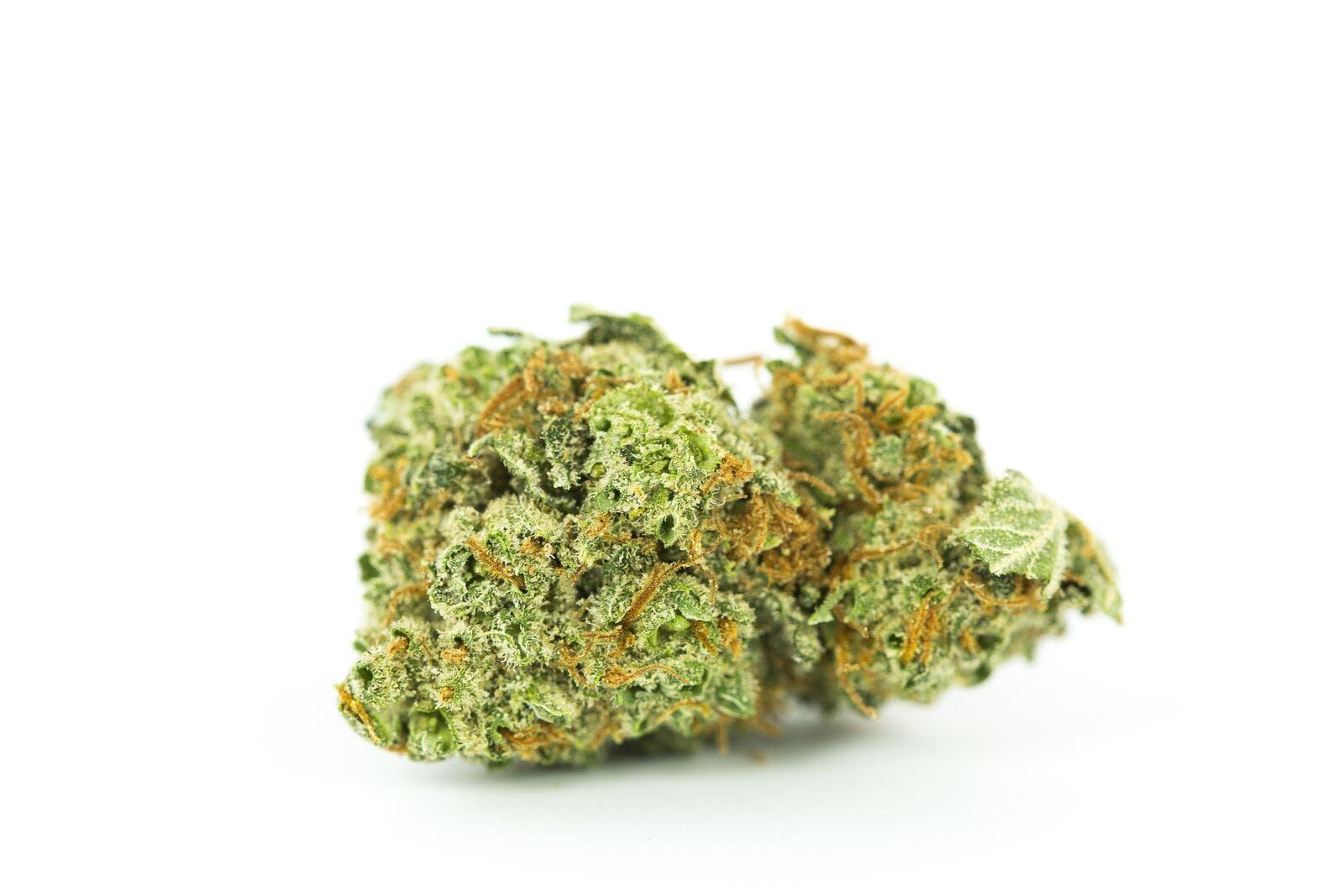 Orange Velvet Weed; Orange Velvet Cannabis Strain; Orange Velvet Hybrid Marijuana Strain