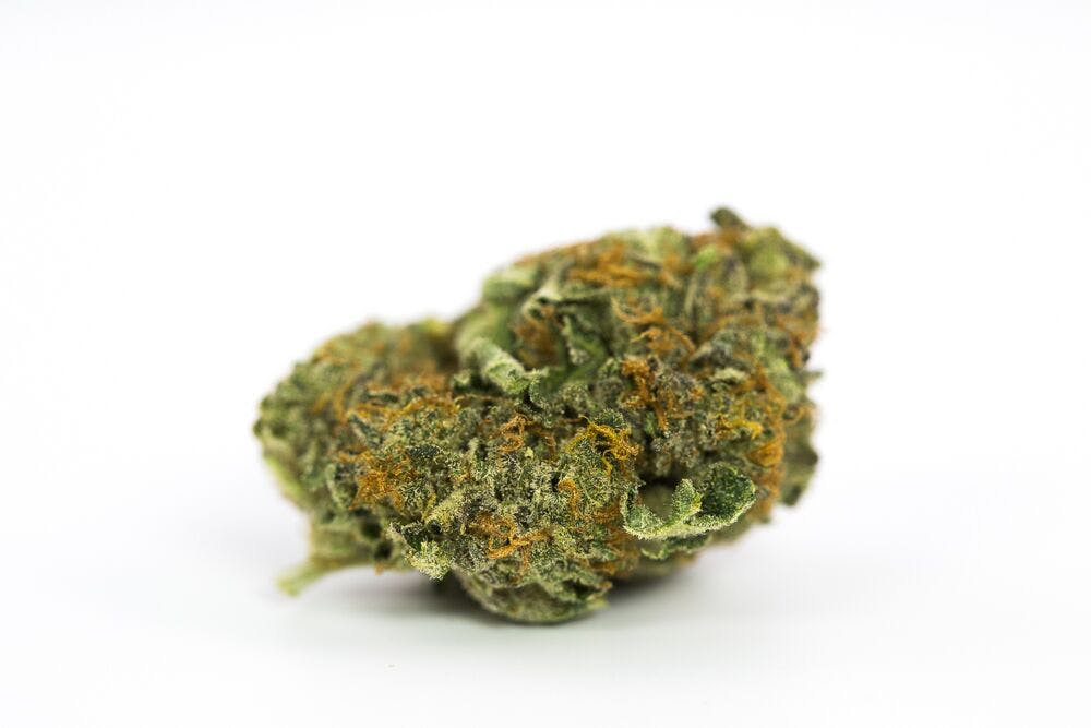 Outer Space Weed; Outer Space Cannabis Strain; Outer Space Sativa Marijuana Strain