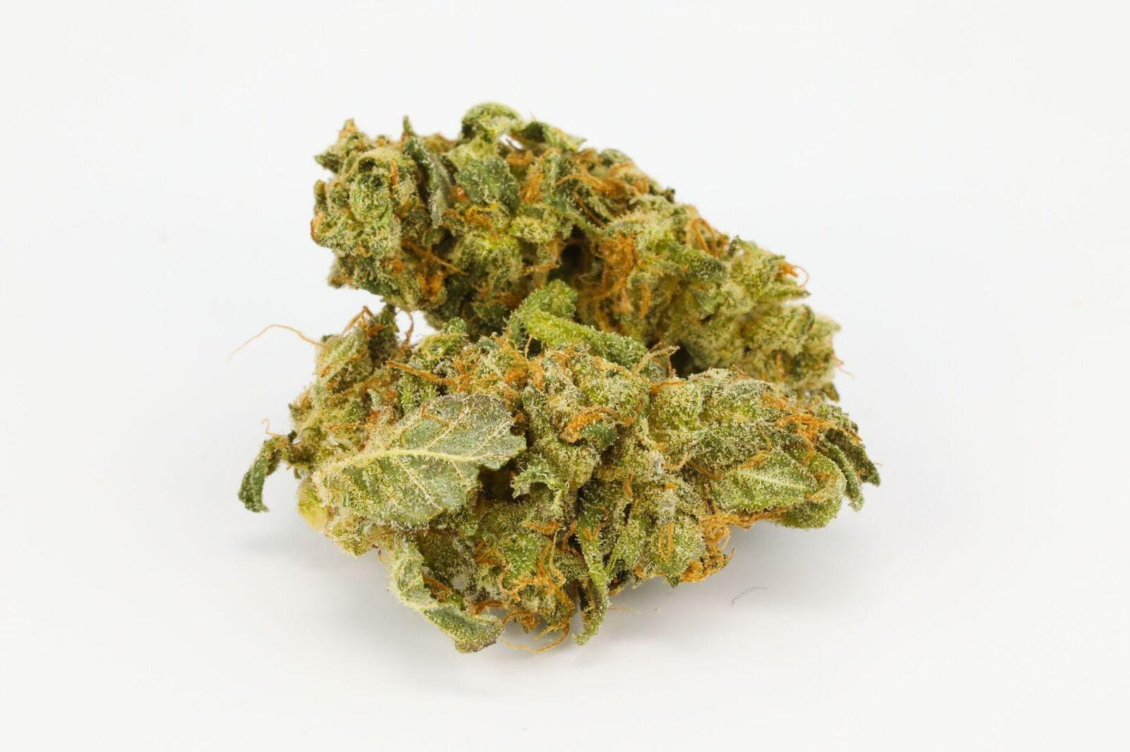 Pink Kush Weed; Pink Kush Cannabis Strain; Pink Kush Hybrid Marijuana Strain