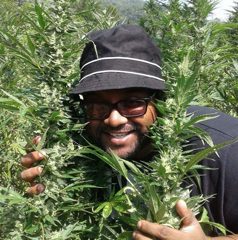 Africa%E2%80%99s first medical cannabis dispensary opens in Durban Congress Blocks Recreational Marijuana Sales In Washington, D.C.