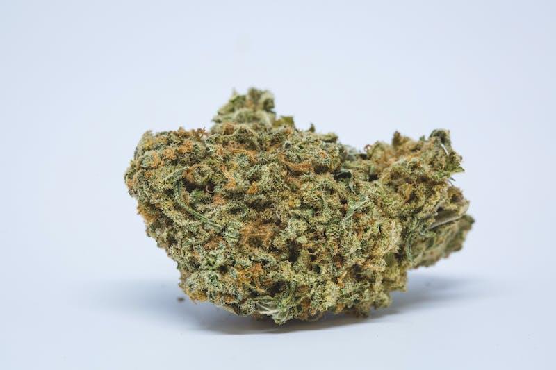 Durban Poison, Durban Poison kush Durban Poison marijuana strain