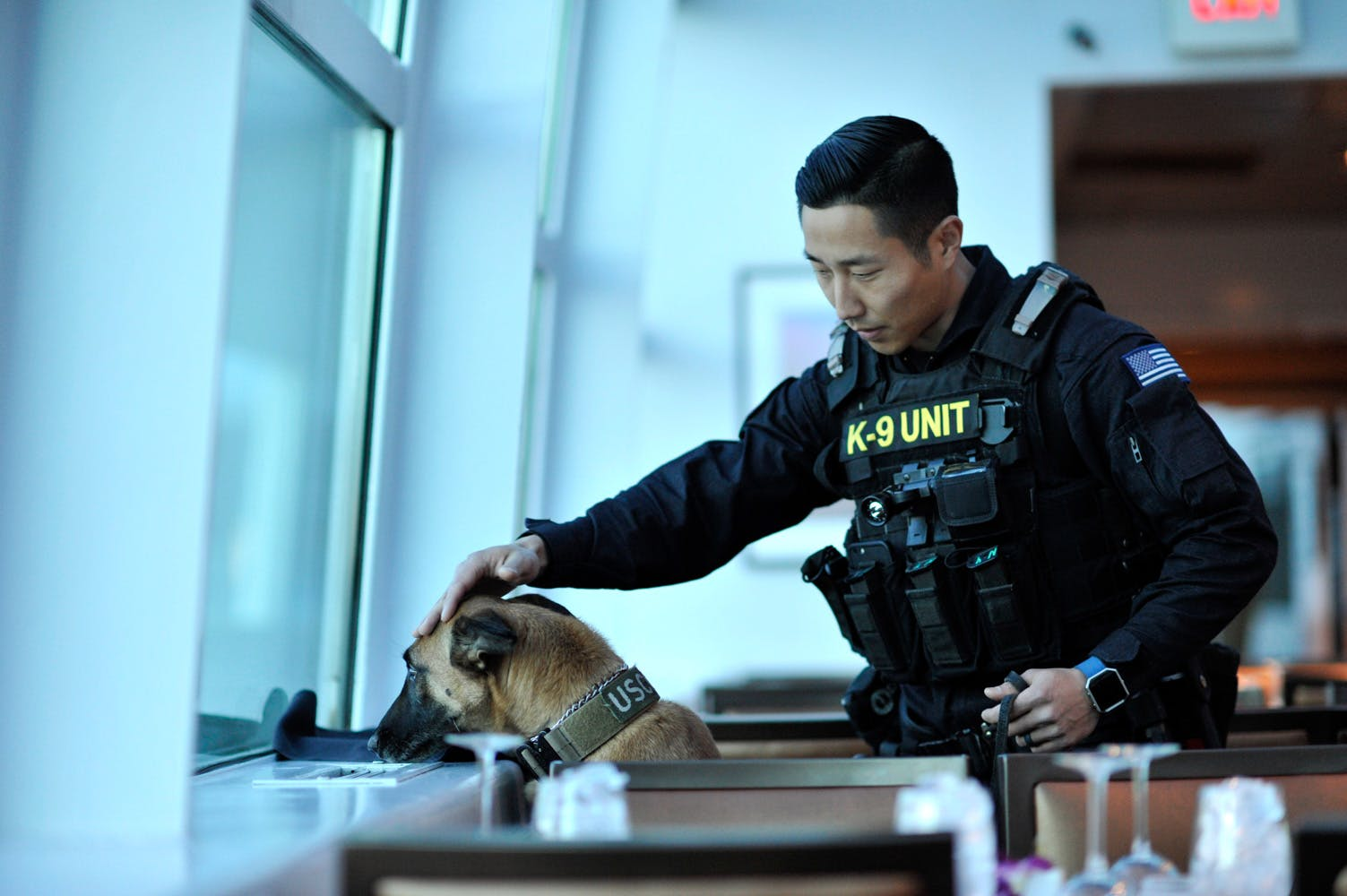 Illinois Cops Claim If Weed Is Legalized Theyll Have To Kill Their Police Dogs 2 Manhattans District Attorney Will No Longer Prosecute Low Level Cannabis Crimes