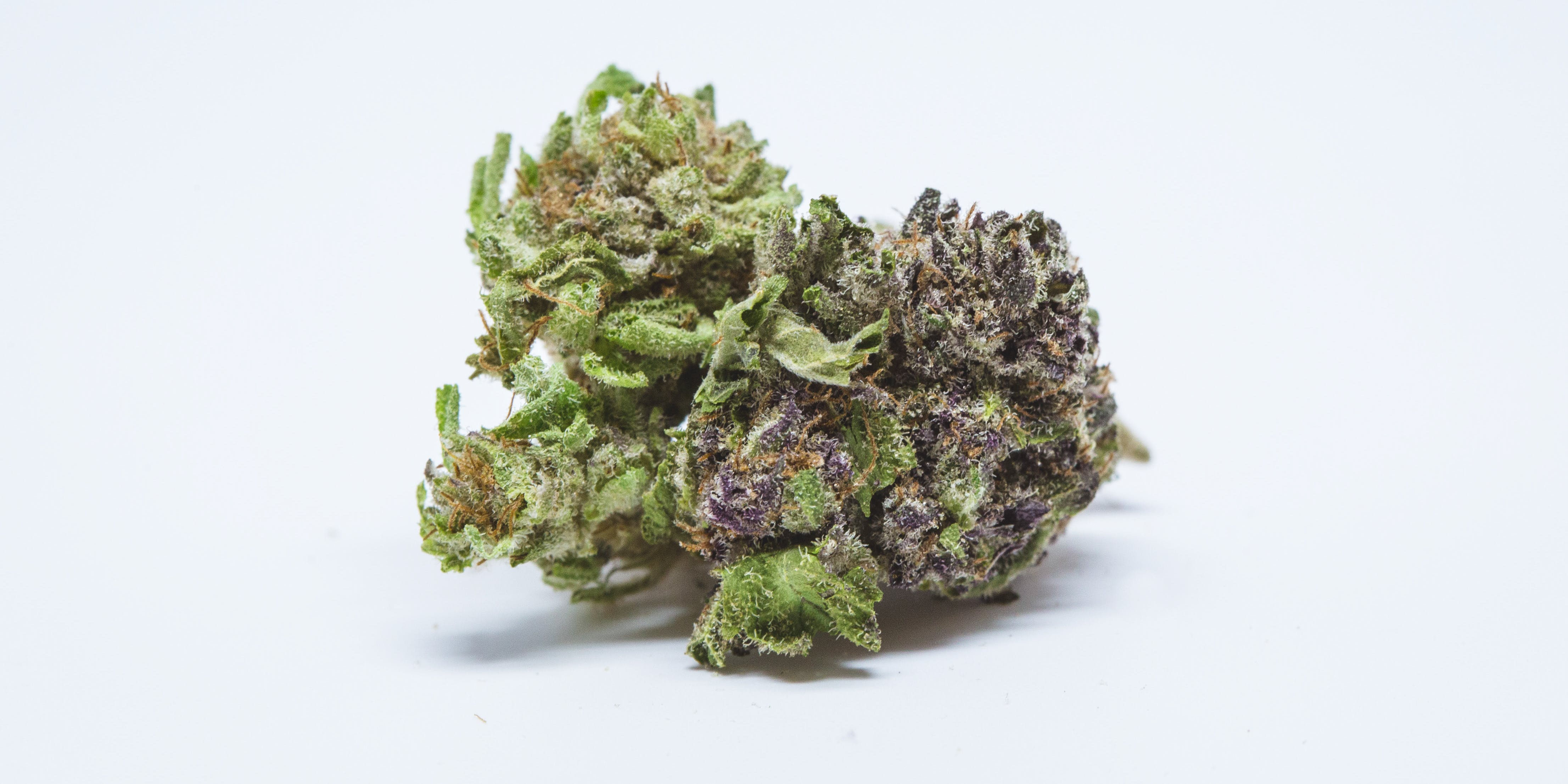 Which weed helps you sleep? 10 Best Bedtime Strains