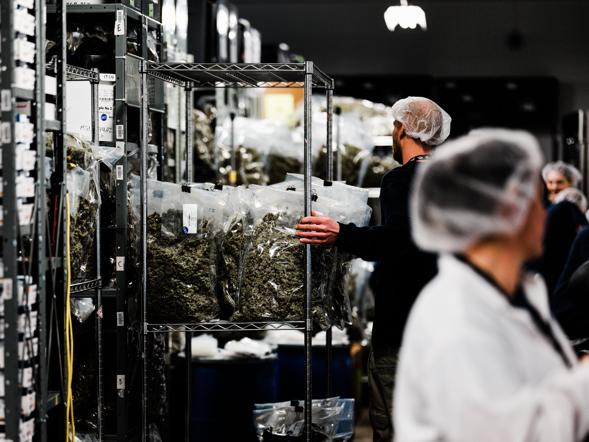 Canada Isnt Licensing Cannabis Cultivation Sites Fast Enough To Meet Demand1 California Considers Licensing Its Own Banks For The Cannabis Industry