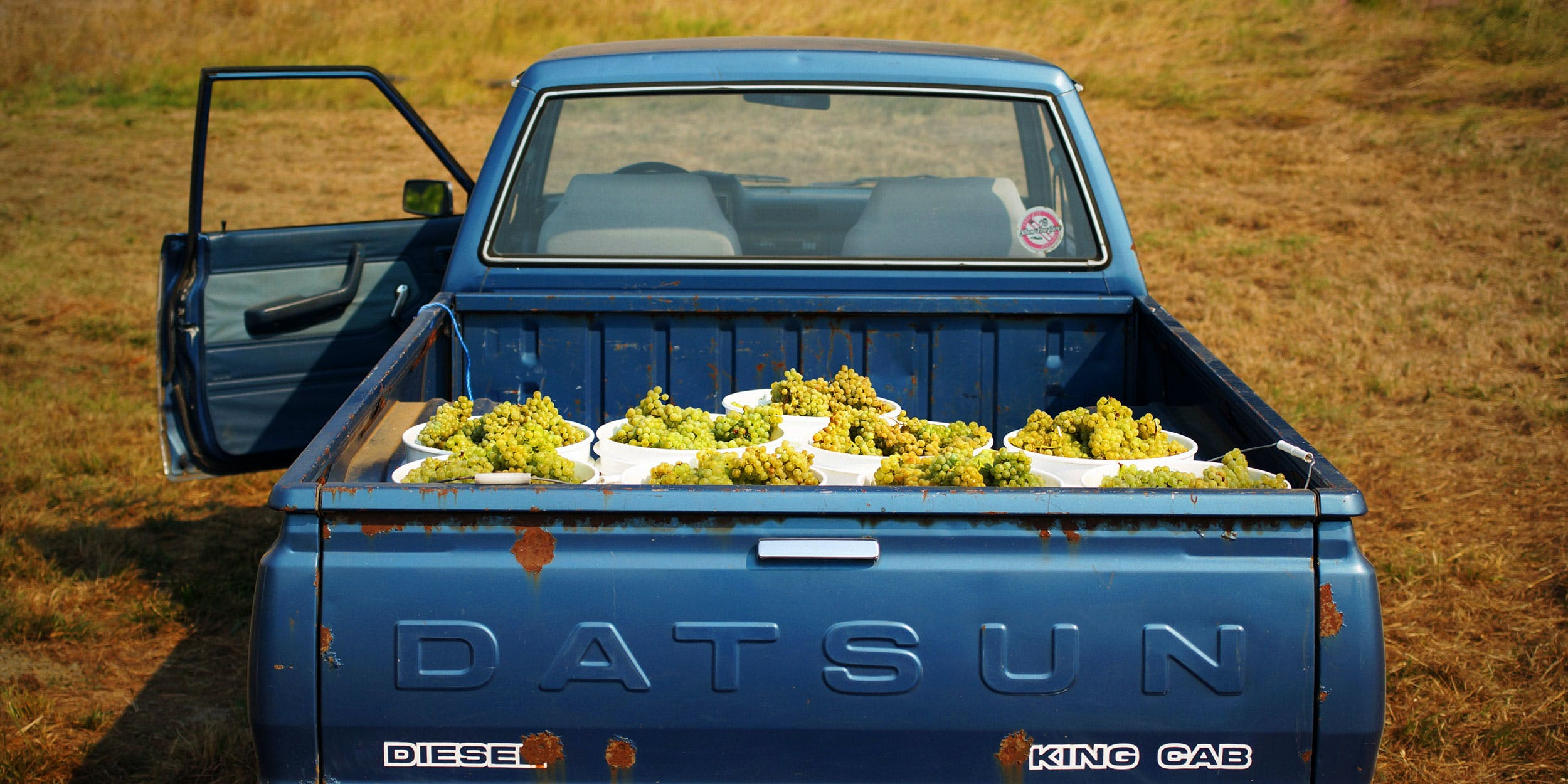 Truck full of grapes to make wine