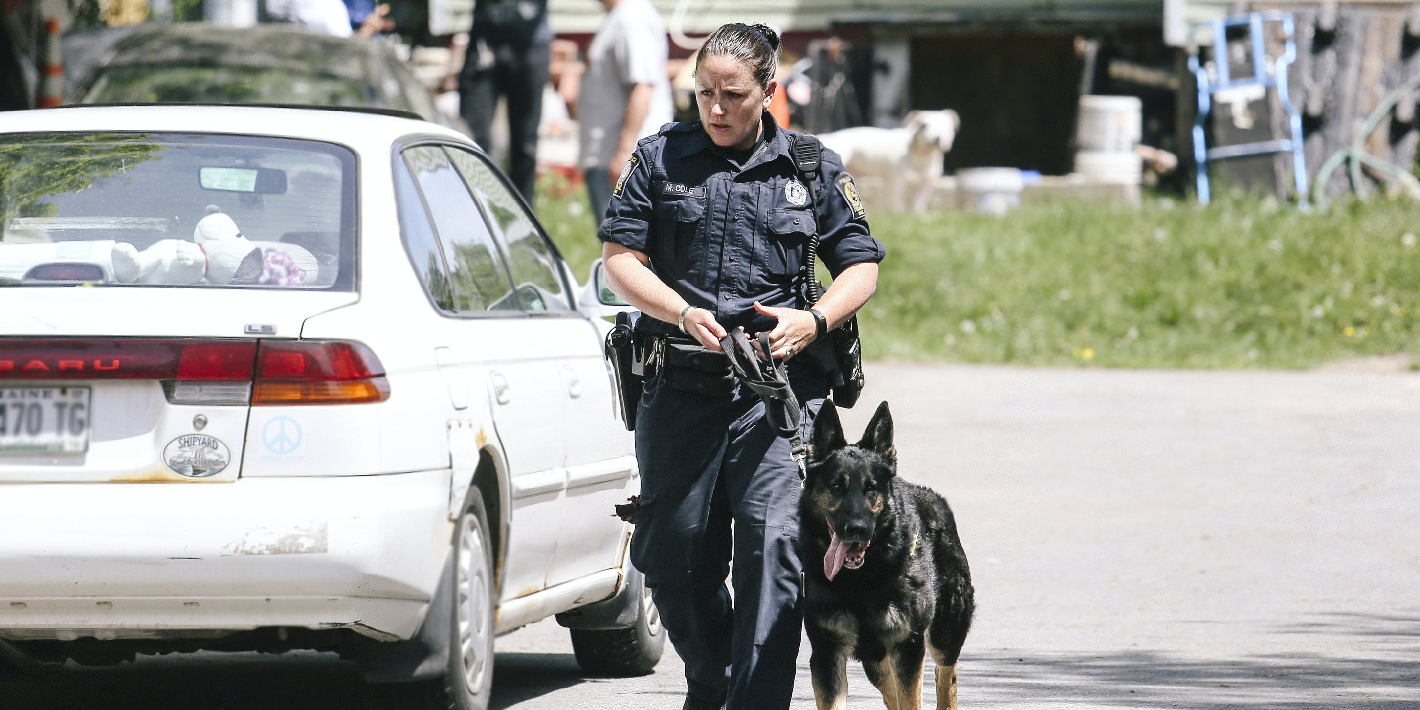 Police officer leads drug dog on search outside a home in Portland, Maine.