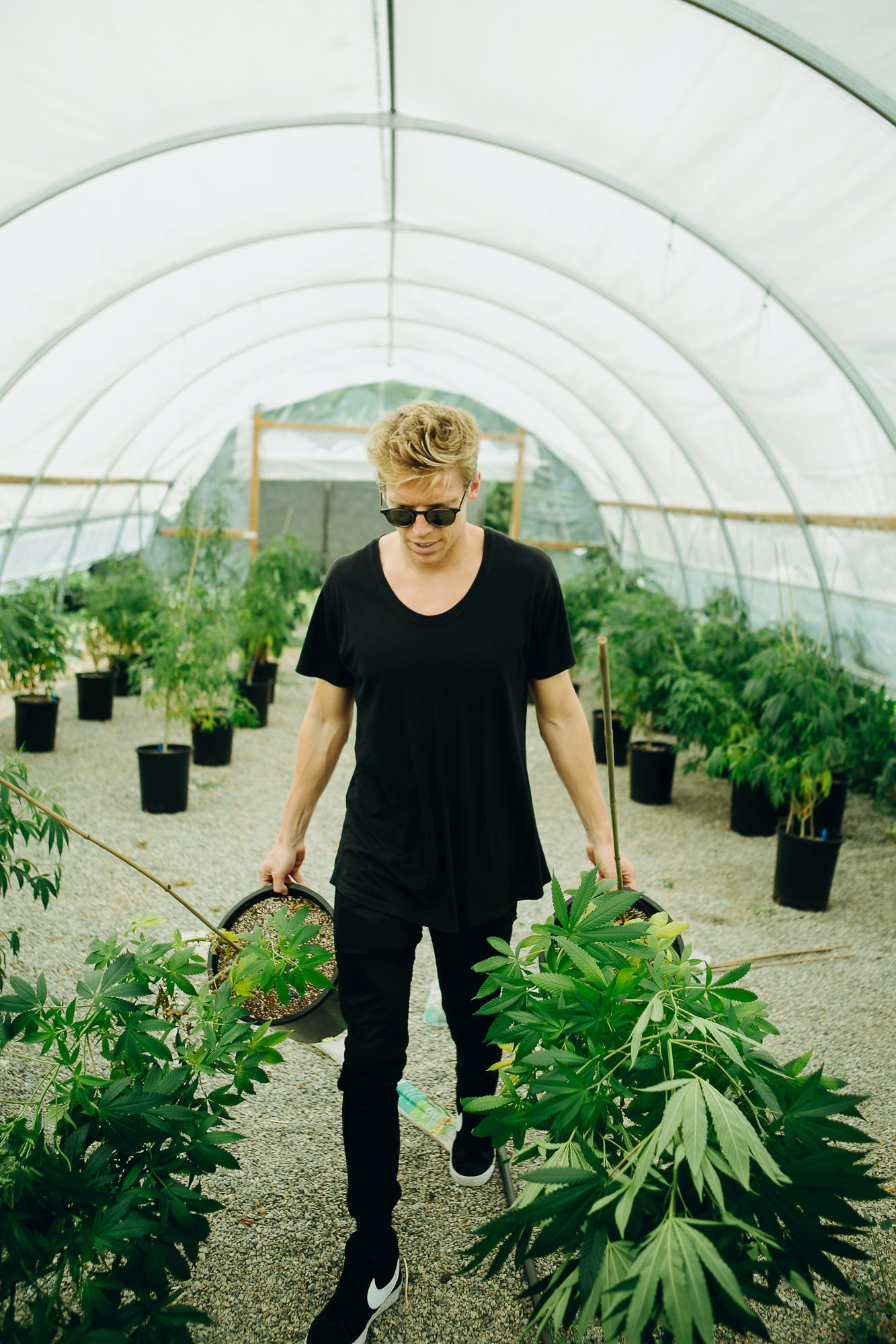 From Death%E2%80%99s Door To Thriving Business Here%E2%80%99s How Mills Miller Saved His Own Life With CBD Oil 12 This Is How California Is Destroying $350 Million Worth Of Weed