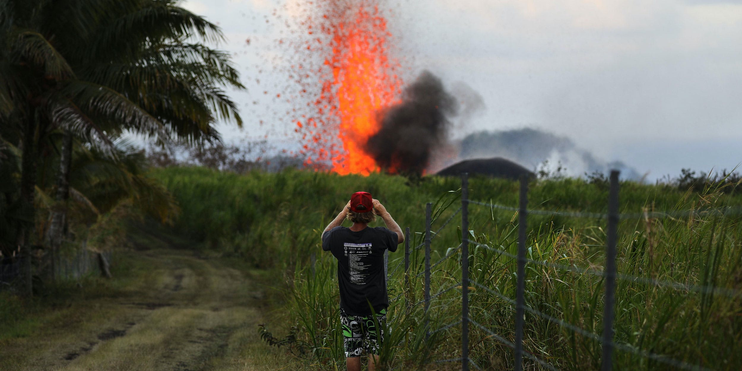 Hawaiian Cannabis Farmers Refuse to Leave Crops Amid Spreading Volcanic Lava