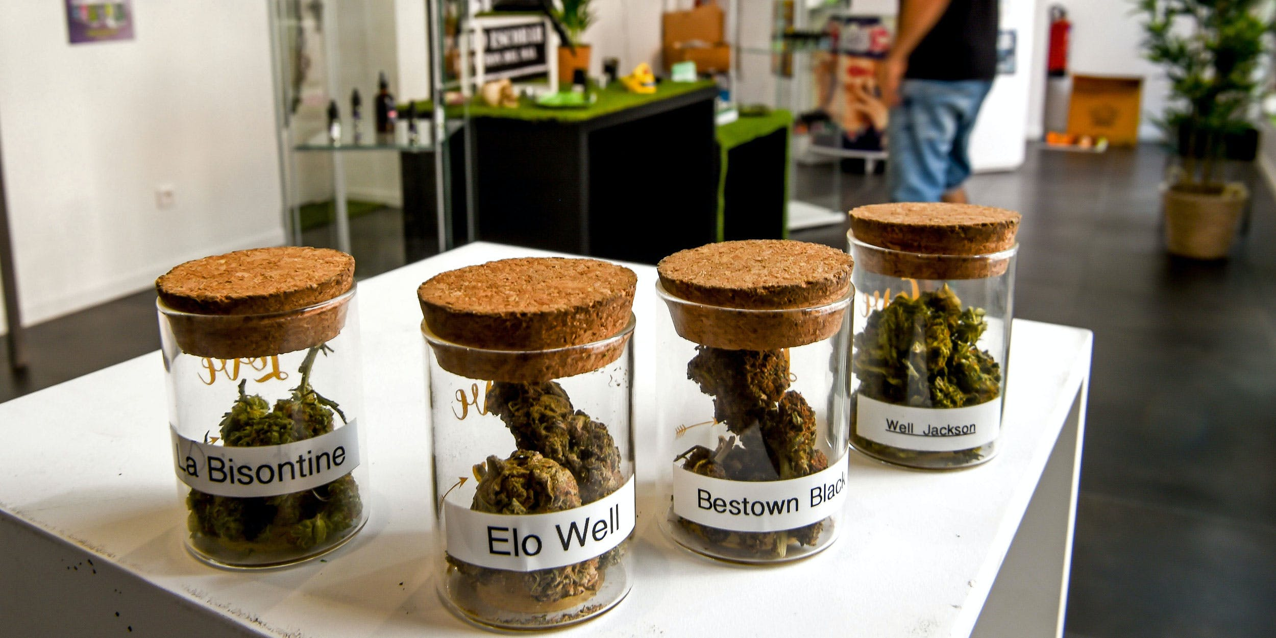 Paris Cannabis Cafe