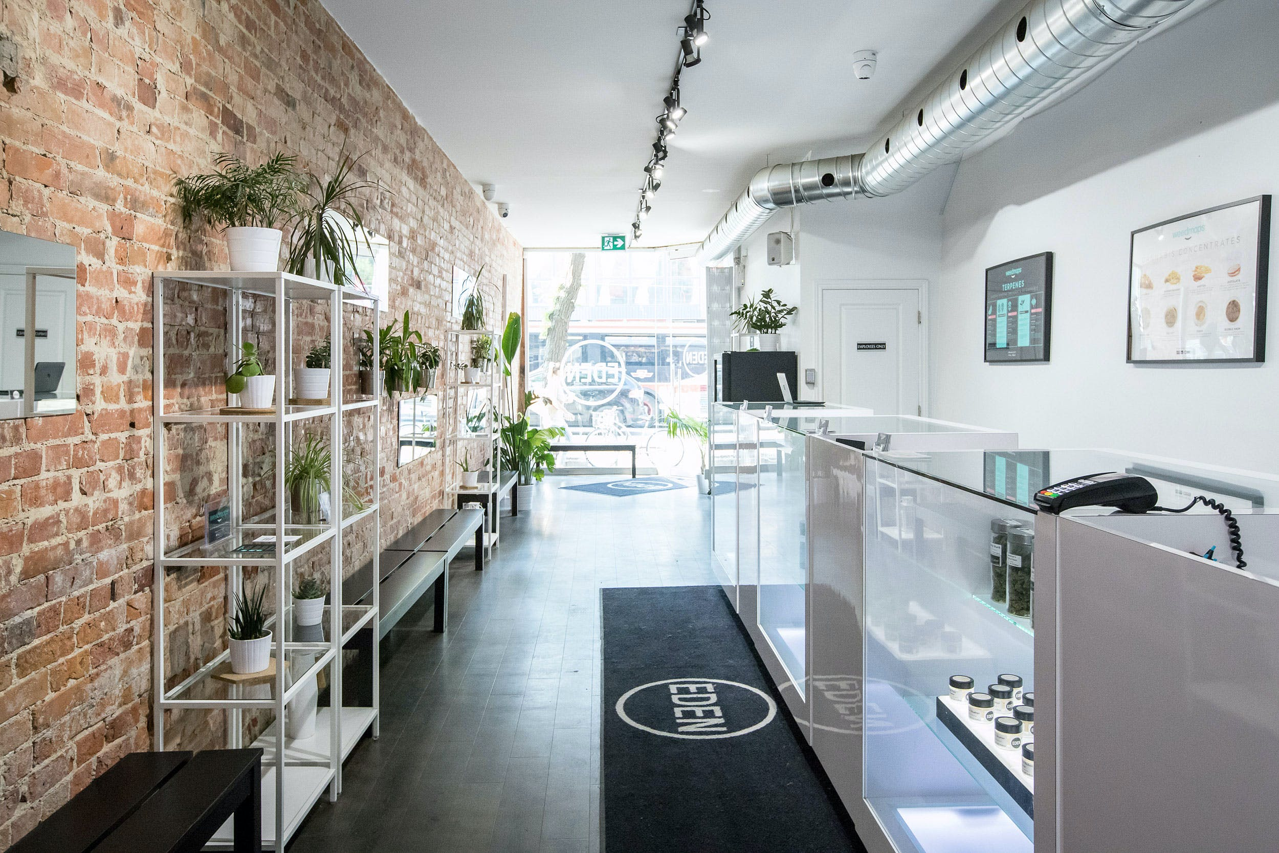 What is a Cannabis Dispensary A Beginner%E2%80%99s Guide to Buying Weed Legally What is a Dispensary? How To Buy Weed Legally