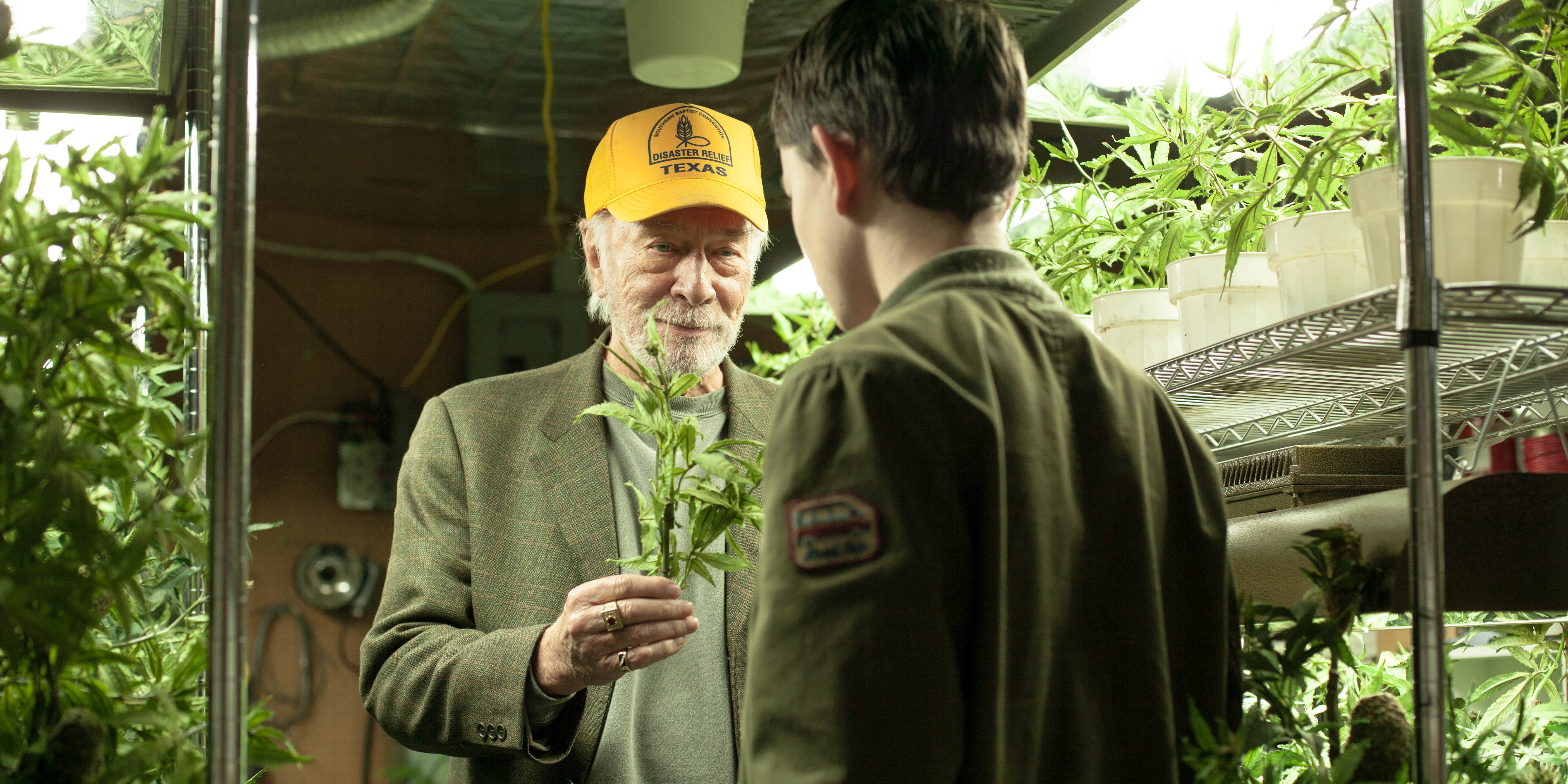 It Turns Out Hollywood's Latest Weed Comedy is Based on a True Story