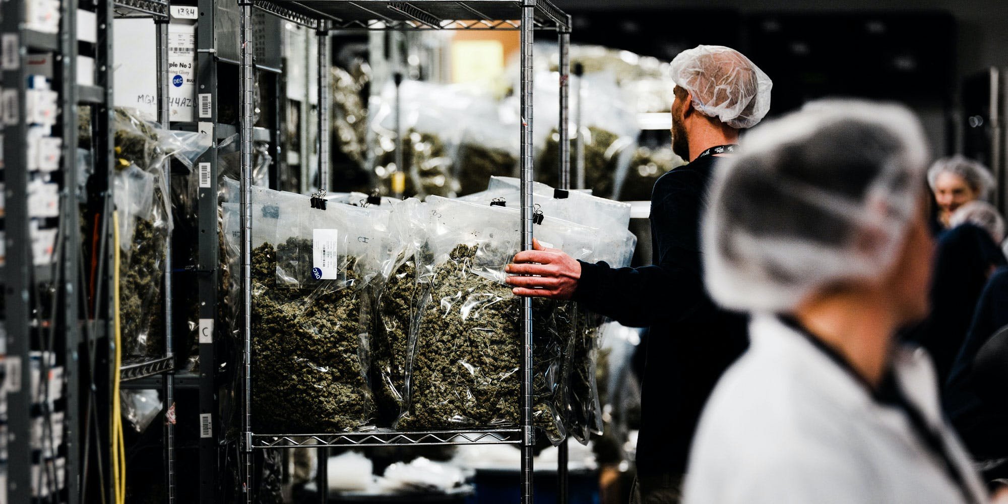 Employees at Tweed, a legal licensed producer in Ontario, ready cannabis for sale. In legal states like Washington, there's stiff competition among growers. This has caused some of them to divert their legal cannabis across state lines