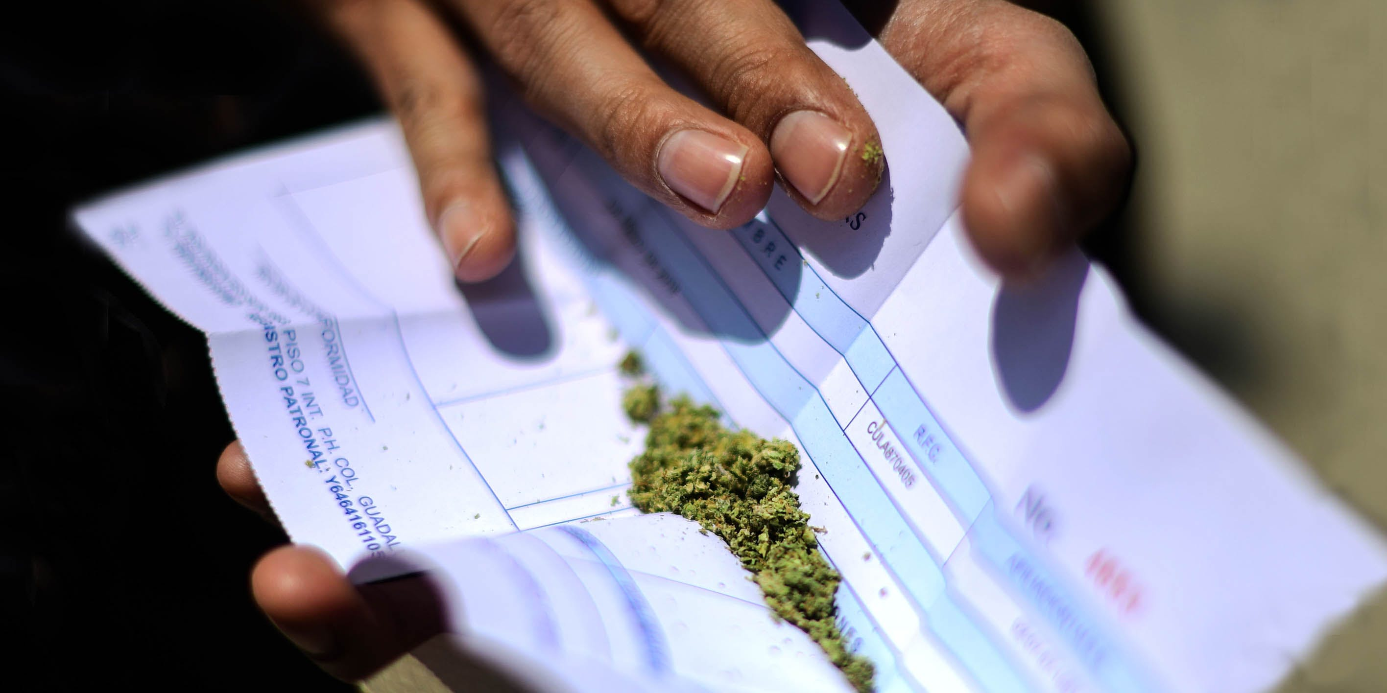 Californians Choose the Black Market Over More Expensive, Legal Weed