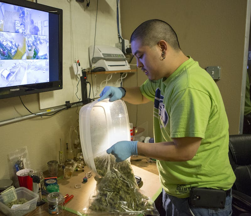The state of Washington is growing way too much weed 0 Washington is Growing Way, Way Too Much Weed