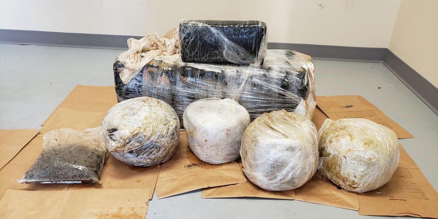 More than 100 pounds of weed washed up in Florida.