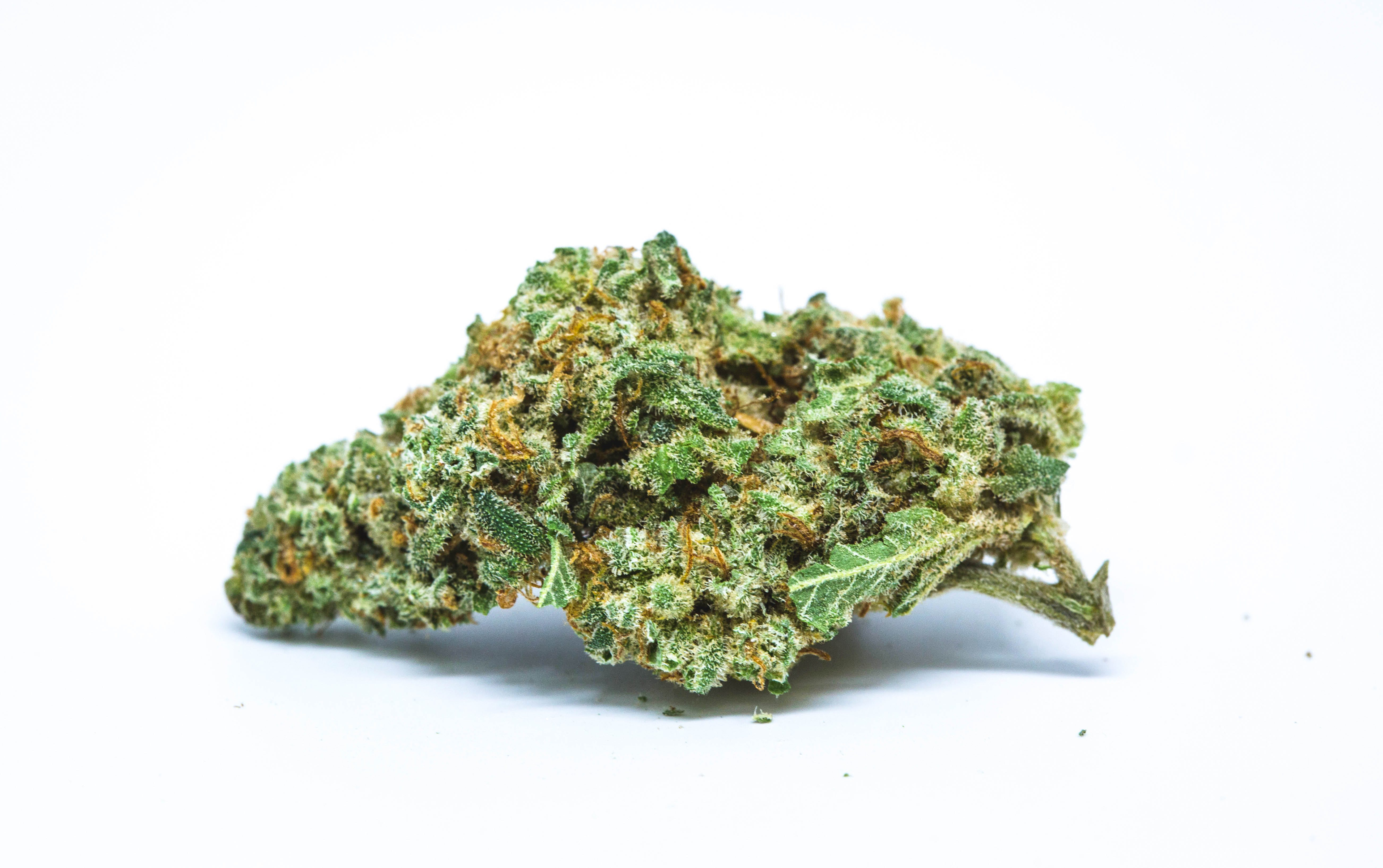 Headband Marijuana Strain How to Get the Most Out Of Your Stash with the Best Weed Grinders