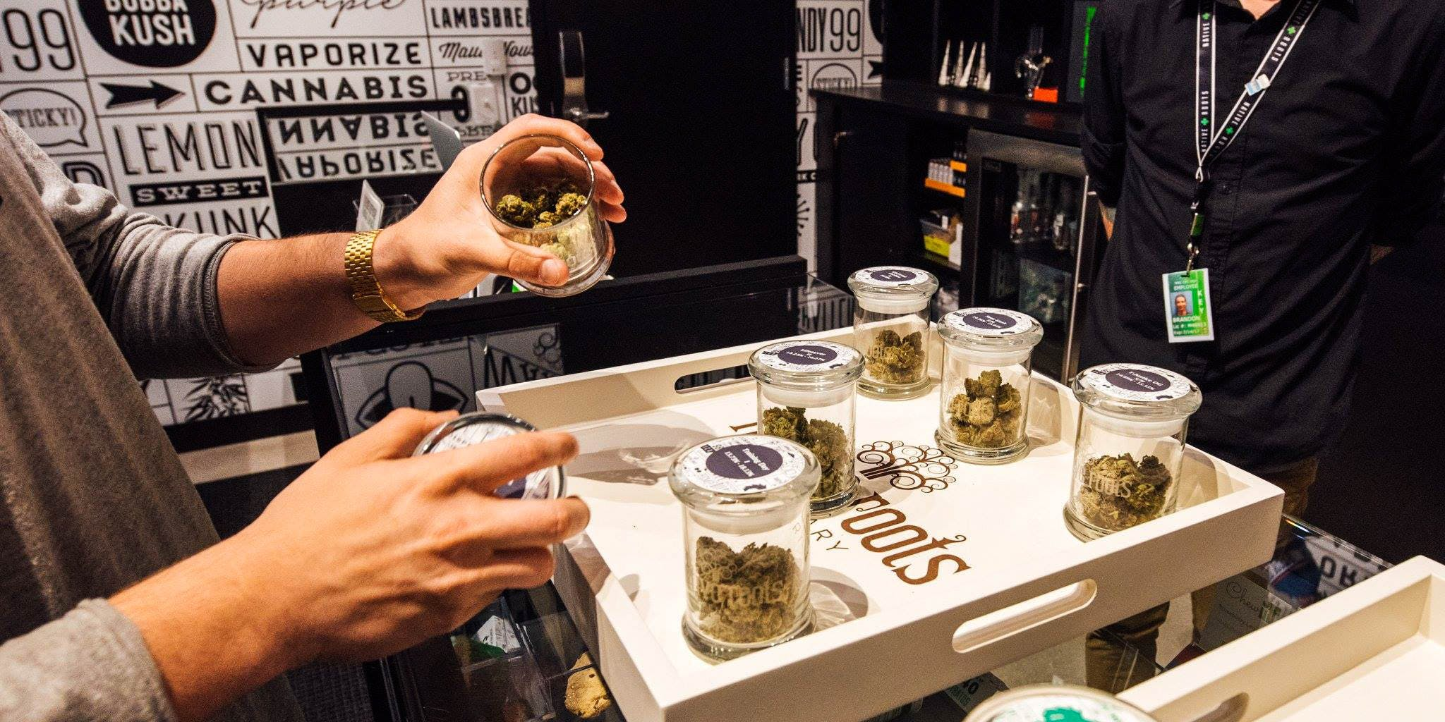 Native Roots Dispensary is one of the best dispensaries in Toronto