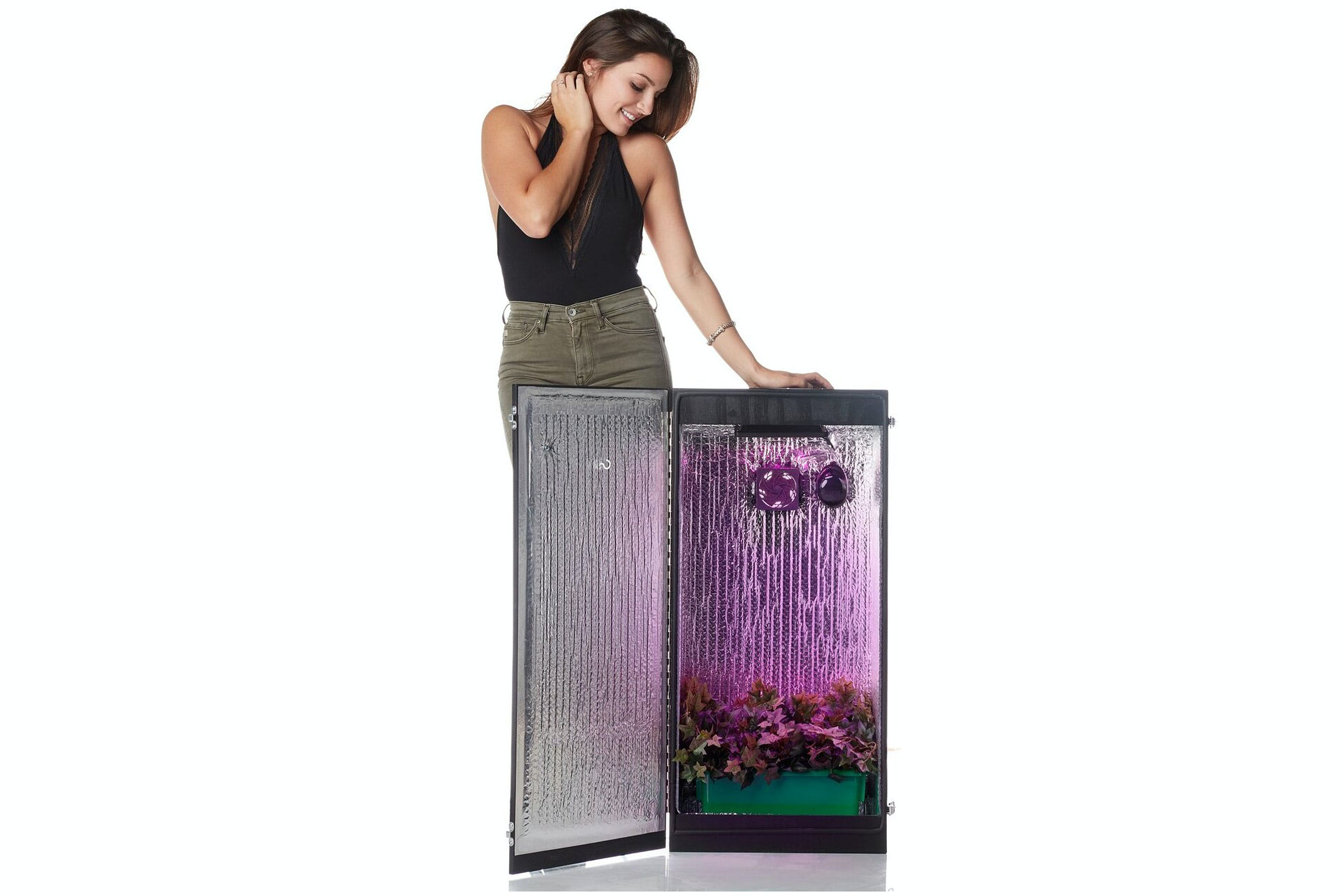 CC2 Grow Box Grow Weed Effortlessly With The Best Grow Box For Beginners