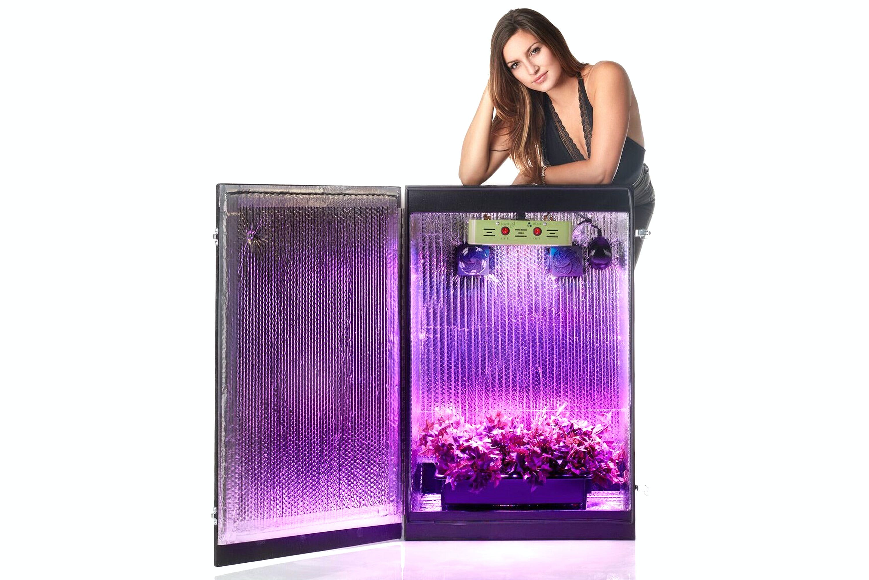 GSG4 Grow Box Grow Weed Effortlessly With The Best Grow Box For Beginners