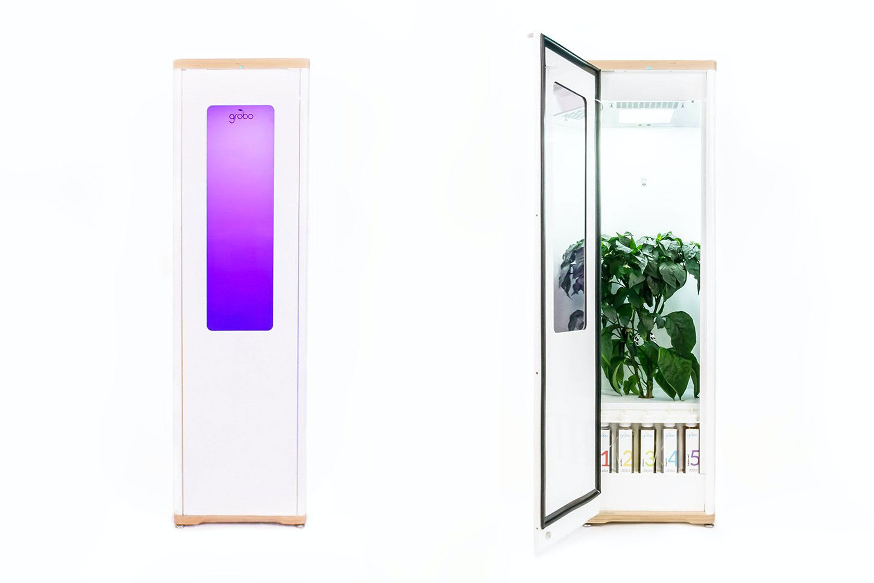 Grobo Grow Box Grow Weed Effortlessly With The Best Grow Box For Beginners