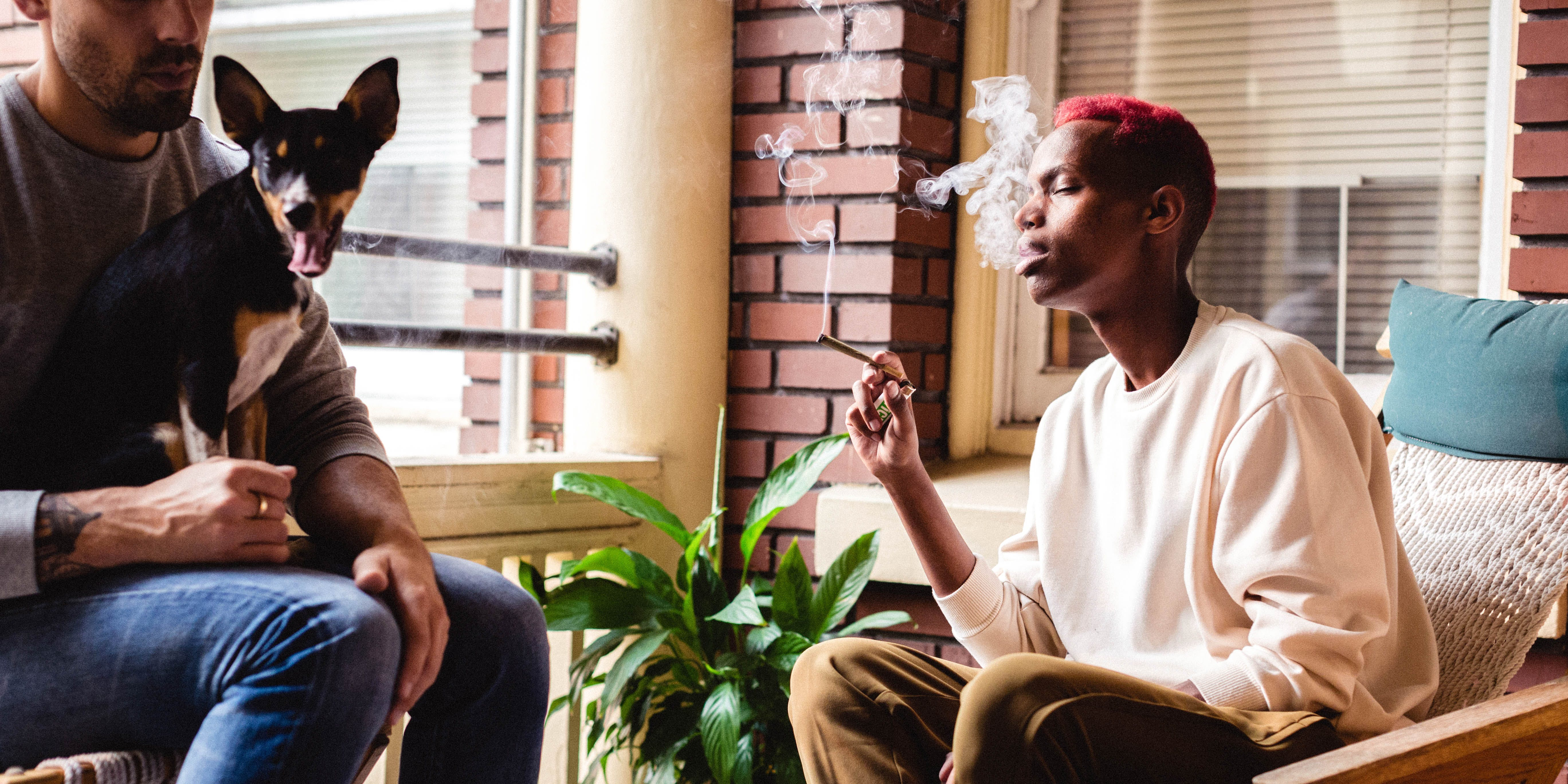 In this article we explore the health benefits of marijuana. Here, a man smokes a joint on the couch with his friend