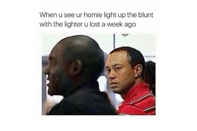The 100 Best Weed Memes For True Herb Enthusiasts44 The 100 Best Weed Memes For True Herb Enthusiasts