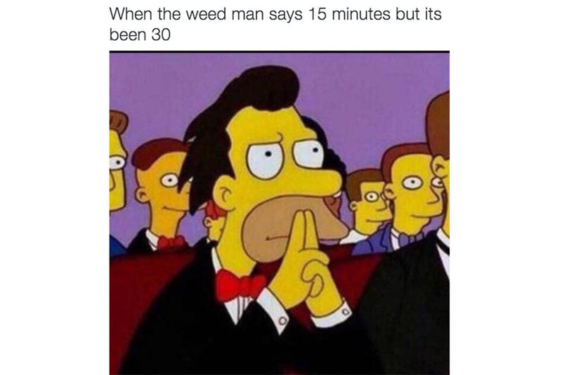 The 100 Best Weed Memes For True Herb Enthusiasts46 The 96 Best Weed Memes For True Herb Enthusiasts