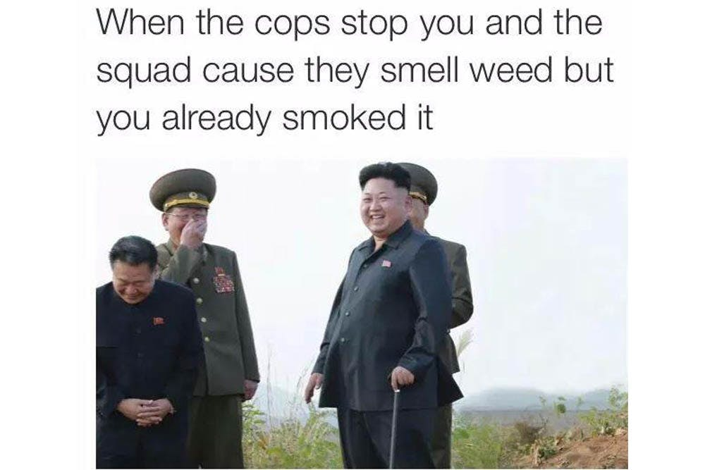 The 100 Best Weed Memes For True Herb Enthusiasts48 The 96 Best Weed Memes For True Herb Enthusiasts
