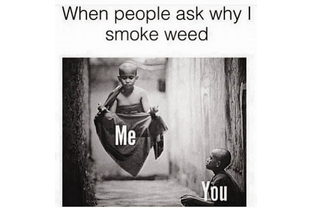 The 100 Best Weed Memes For True Herb Enthusiasts49 The 96 Best Weed Memes For True Herb Enthusiasts