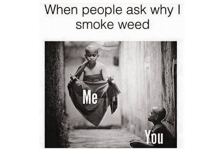 The 100 Best Weed Memes For True Herb Enthusiasts49 The 100 Best Weed Memes For True Herb Enthusiasts