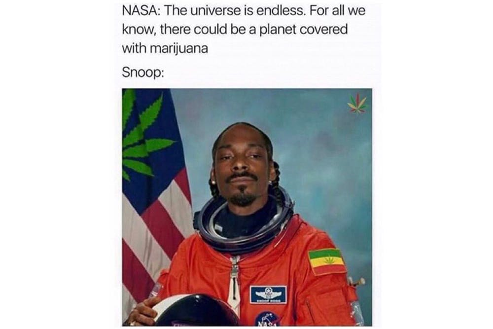 The 100 Best Weed Memes For True Herb Enthusiasts57 The 96 Best Weed Memes For True Herb Enthusiasts