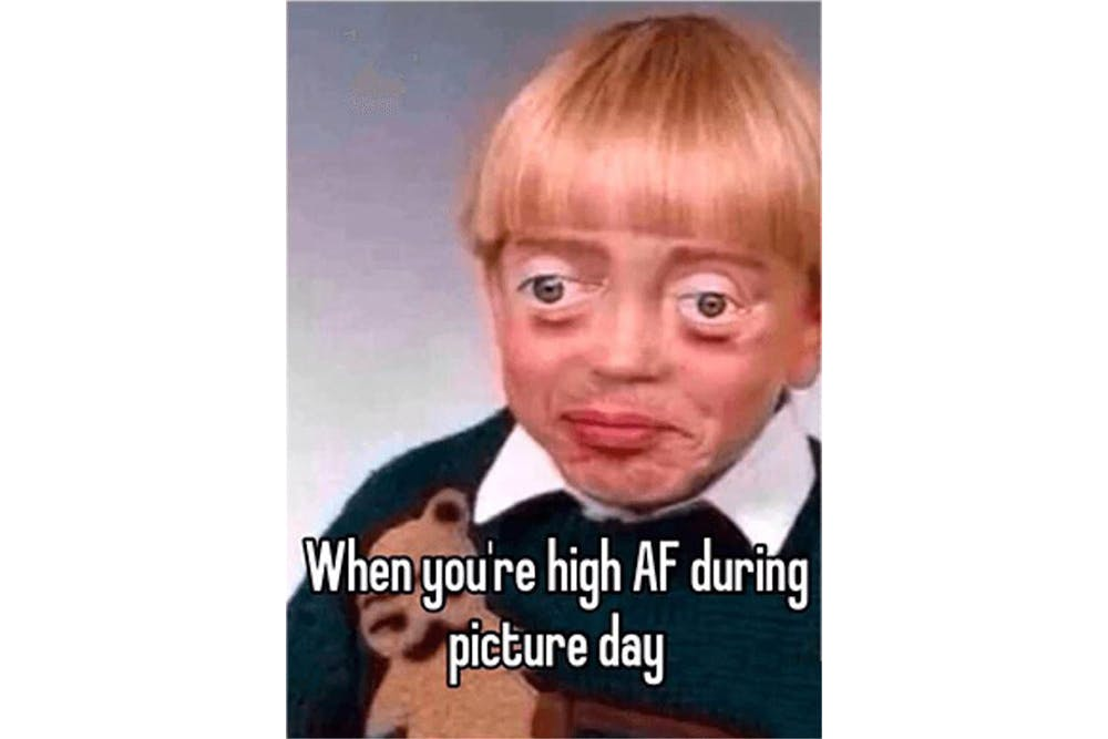 The 100 Best Weed Memes For True Herb Enthusiasts