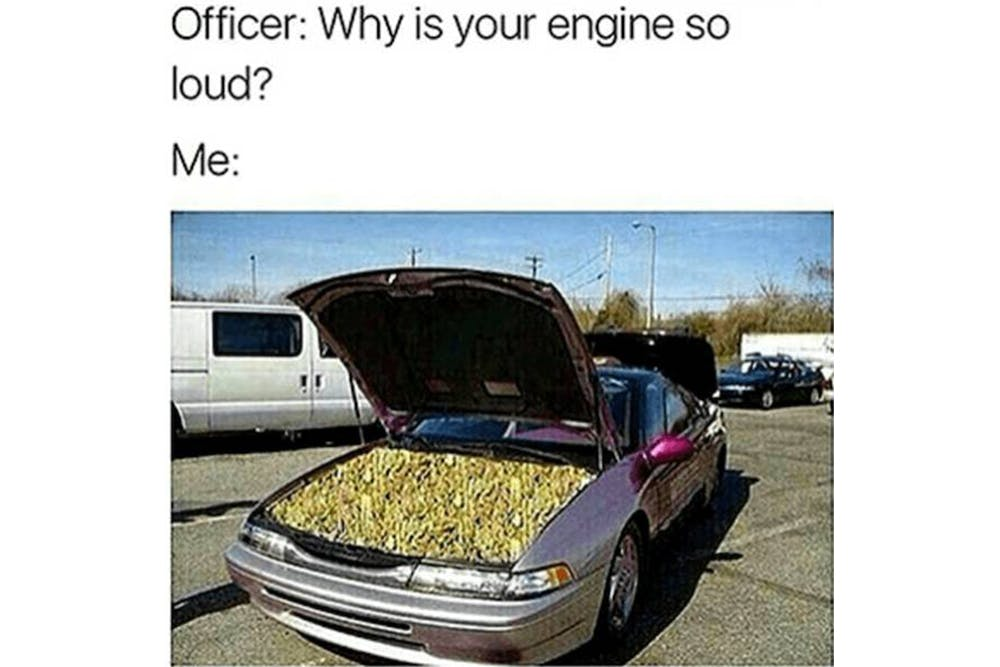 The 100 Best Weed Memes For True Herb Enthusiasts59 The 96 Best Weed Memes For True Herb Enthusiasts