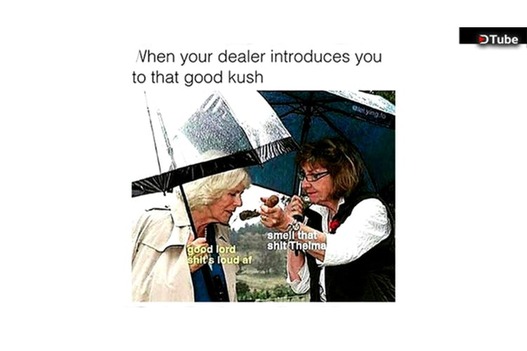 The 100 Best Weed Memes For True Herb Enthusiasts871 The 100 Best Weed Memes For True Herb Enthusiasts