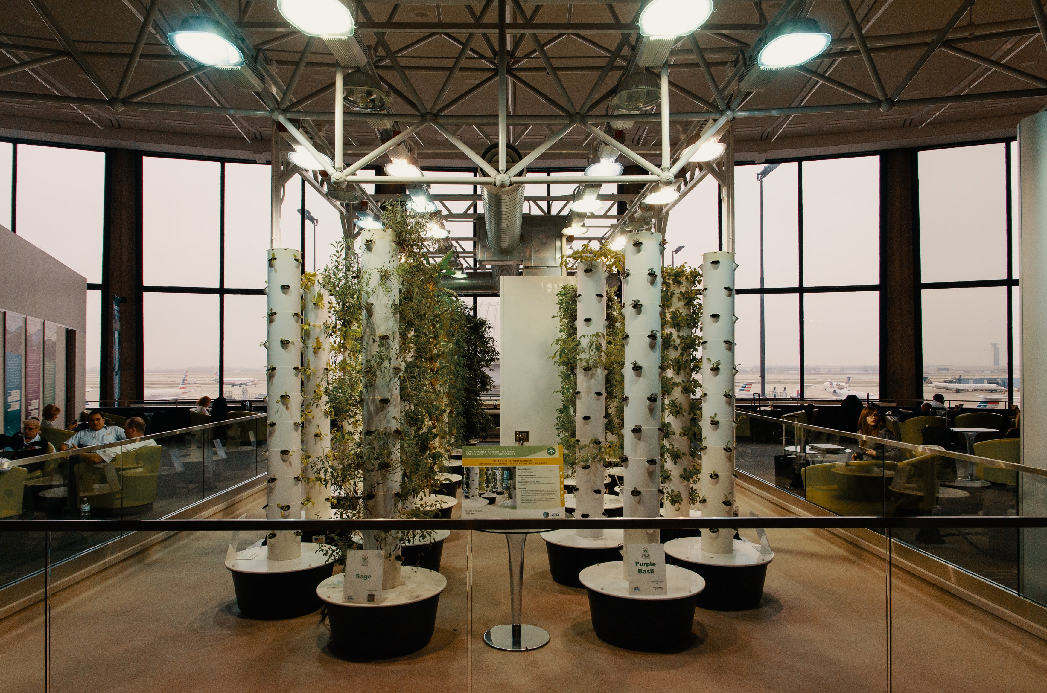 What is Aeroponics Grow Weed Faster and Without Soil2 What is Aeroponics? Grow Weed Faster and Without Soil