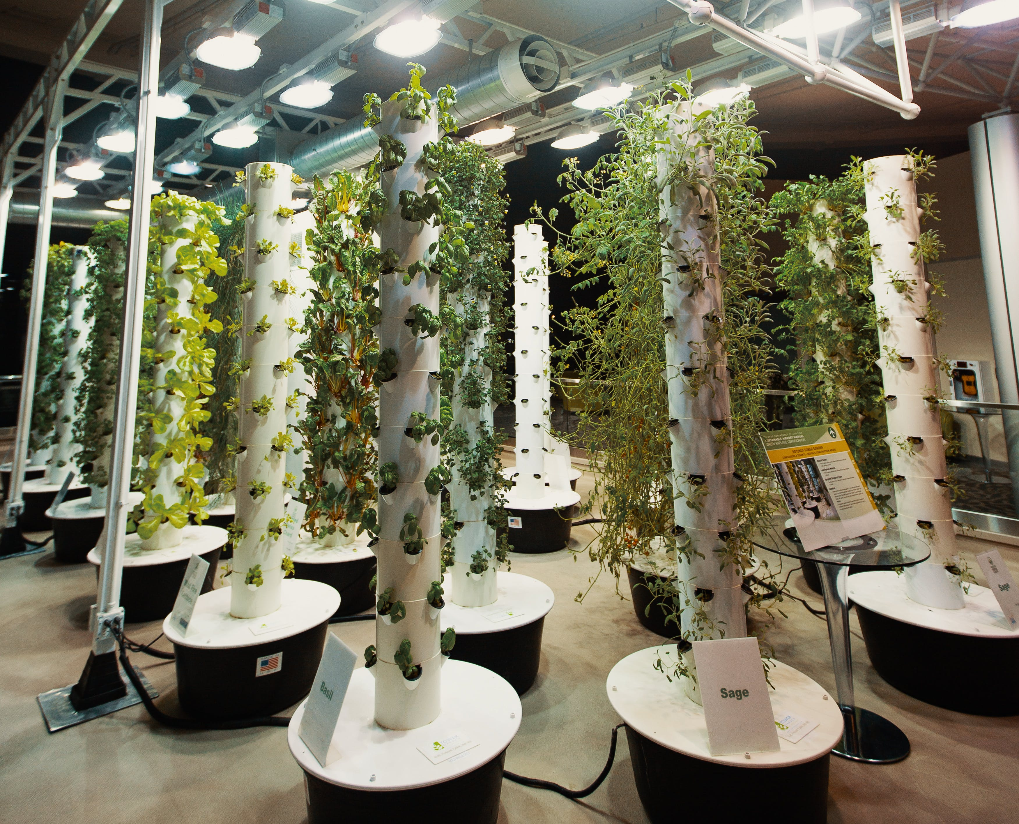 In this article, we answer the question: what is aeroponics? Here, an aeroponic garden at O'hare airport is shown