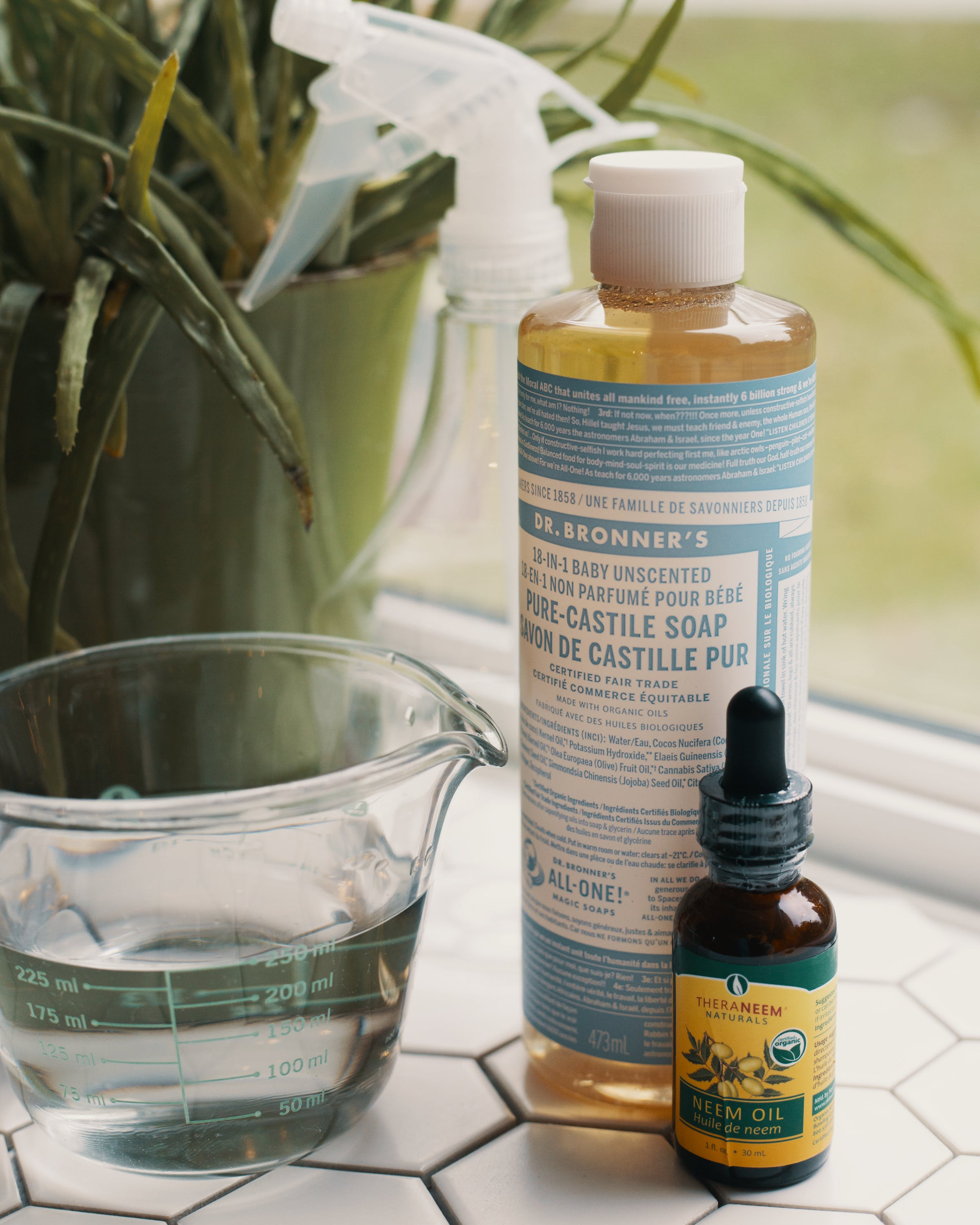 What is the Best Homemade Bug Spray for Weed Plants 2 What is the Best Homemade Bug Spray for Weed Plants?