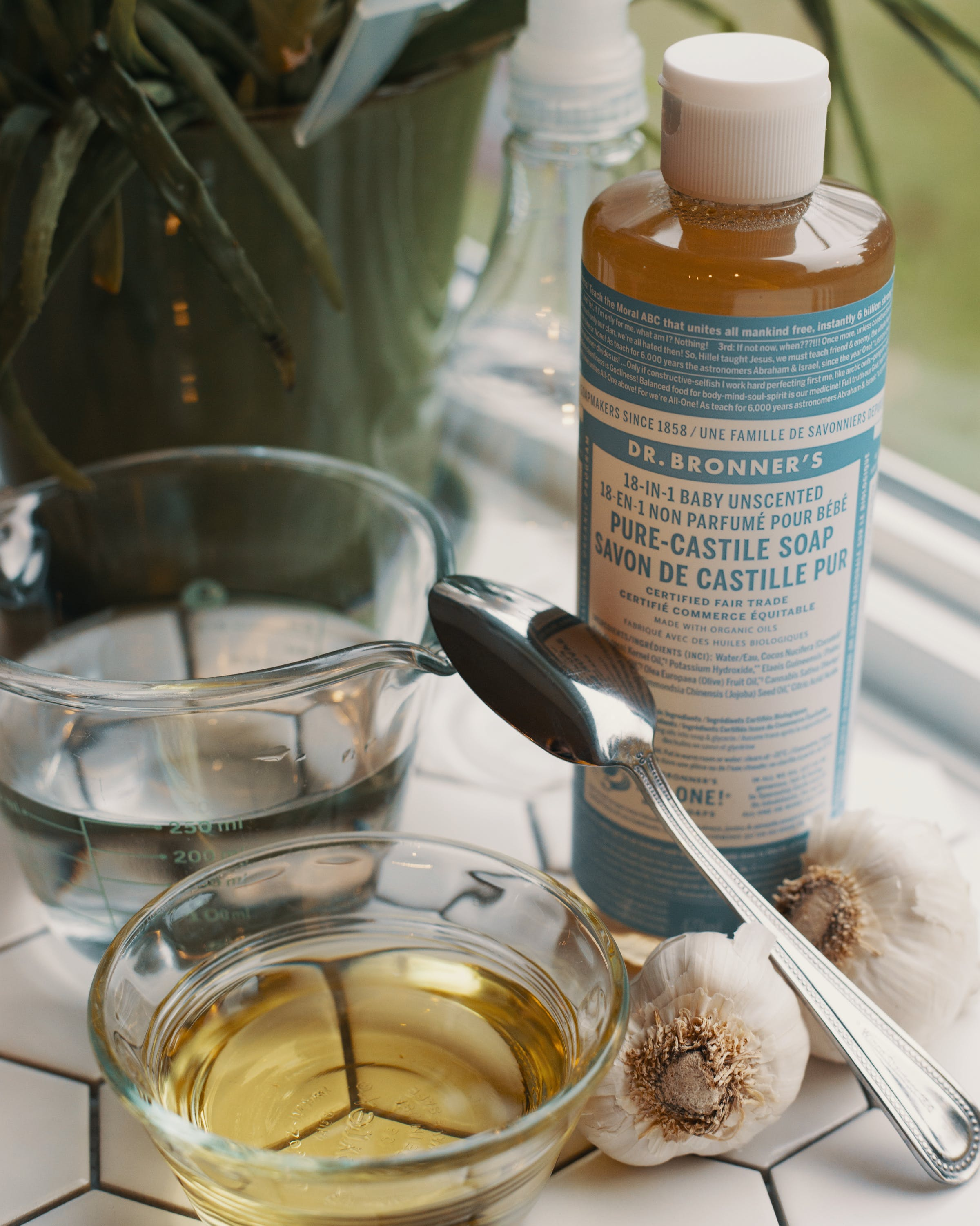 What is the Best Homemade Bug Spray for Weed Plants 4 What is the Best Homemade Bug Spray for Weed Plants?