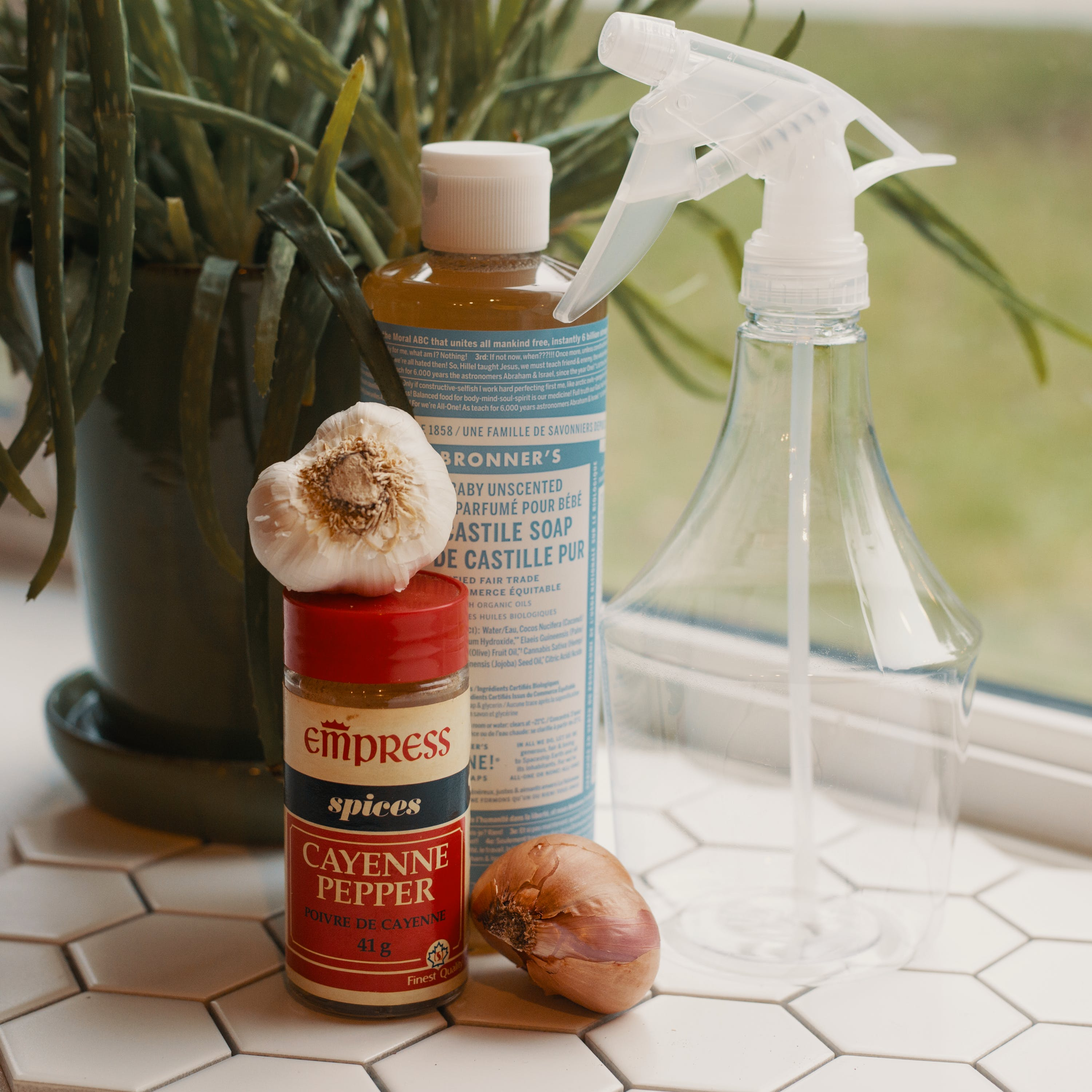 What is the Best Homemade Bug Spray for Weed Plants 5 What is the Best Homemade Bug Spray for Weed Plants?