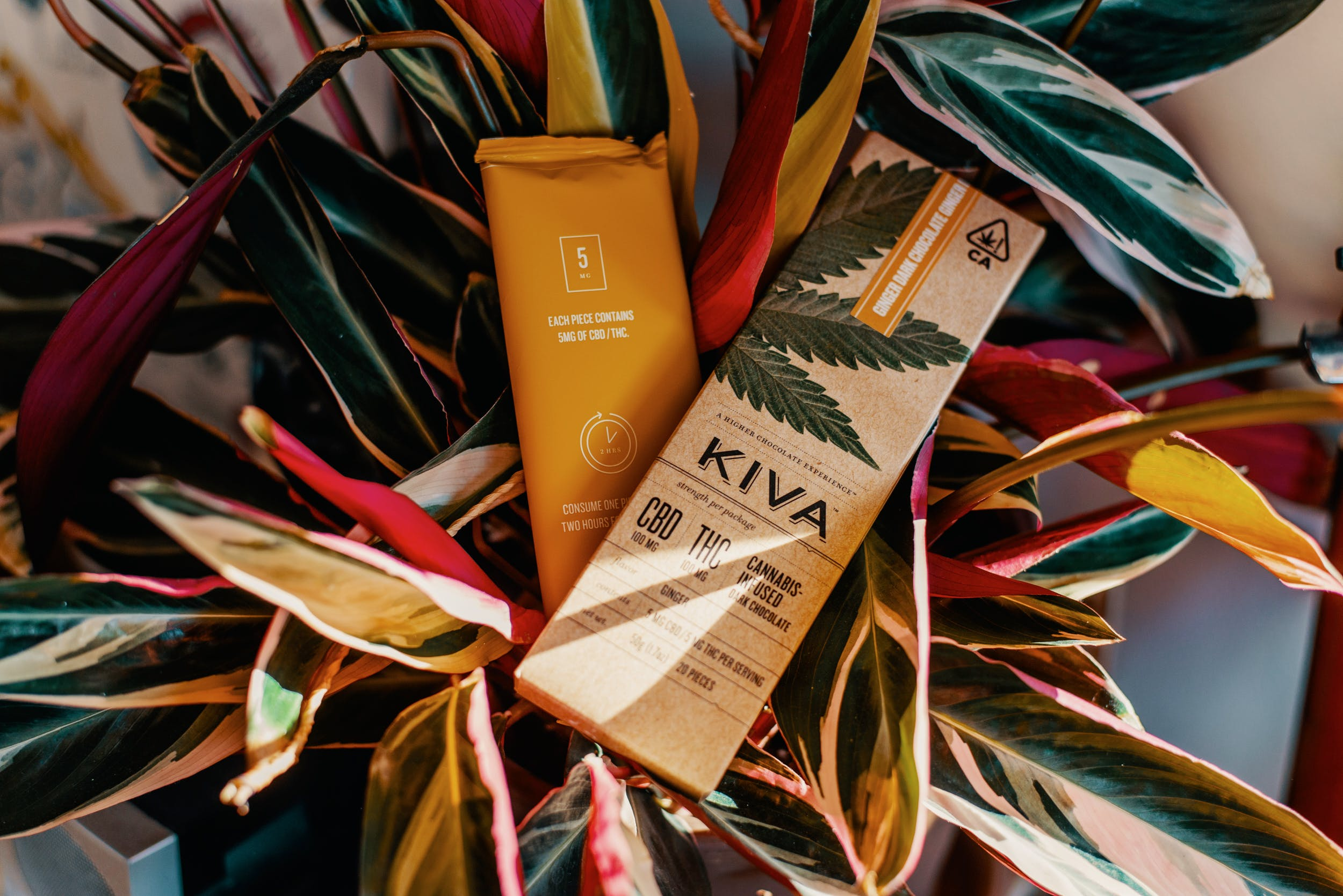 Best CBD Weed Chocolate 29 This Is The Best Weed Chocolate and CBD Chocolate Money Can Buy