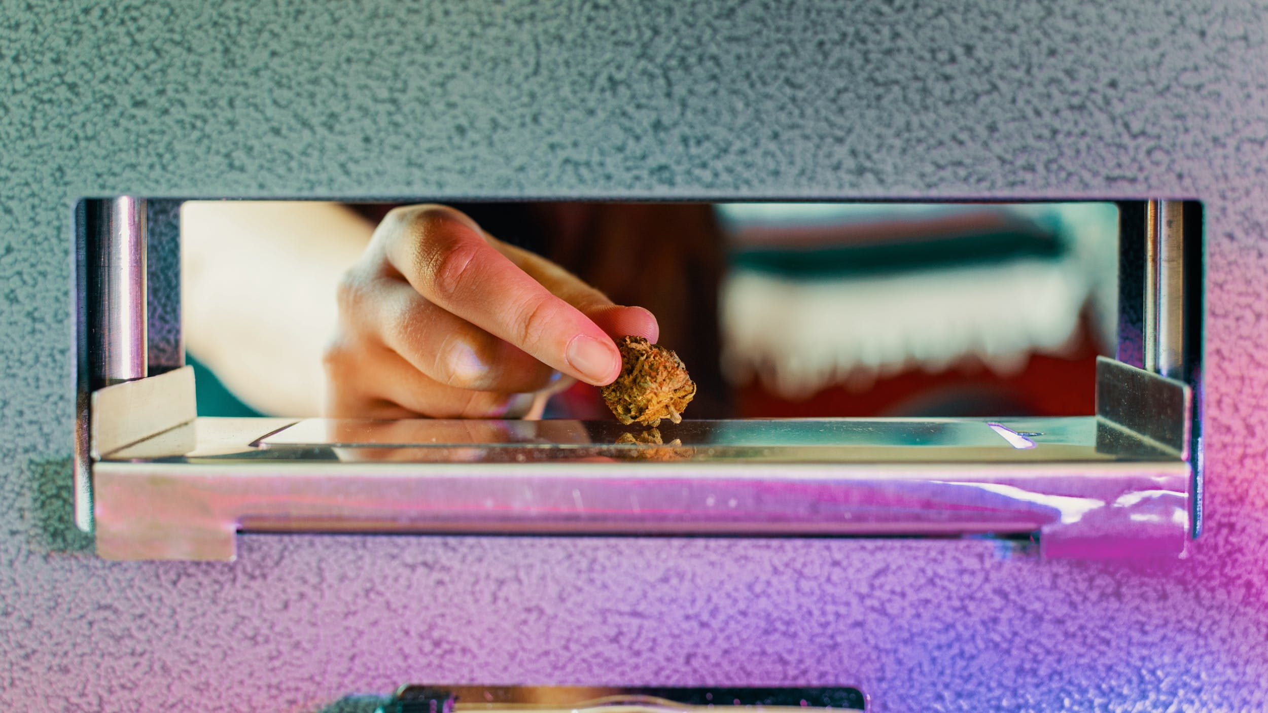 A hand places a nug in the best rosin press