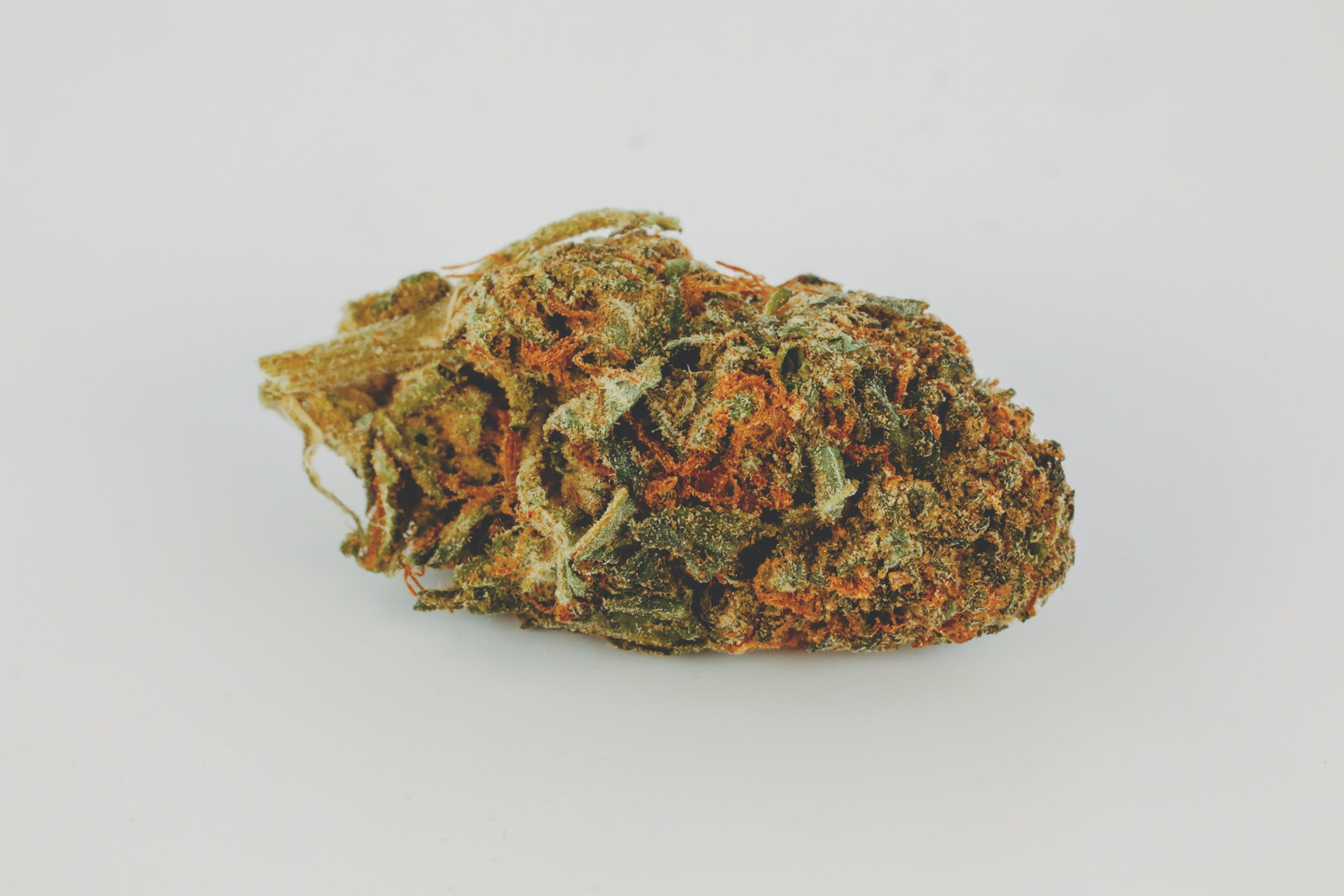 0G8A2811 These are the Best Weed Strains in the World