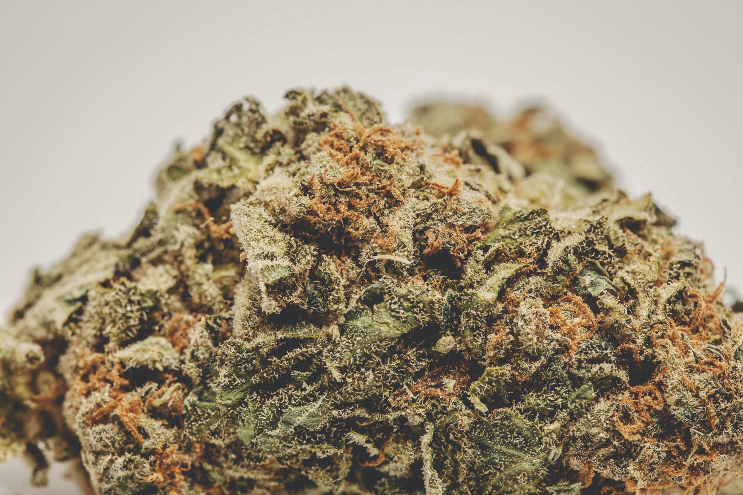 AMS These are the Best Weed Strains in the World