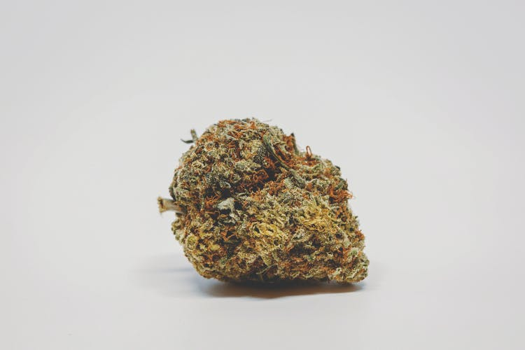 A nug of one of the best weed strains.