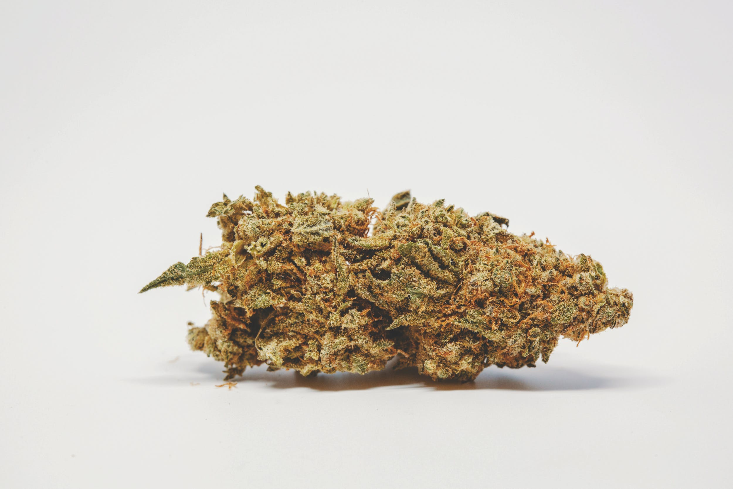 Best Kush Strains 3 These are the Best Kush Strains on the Planet
