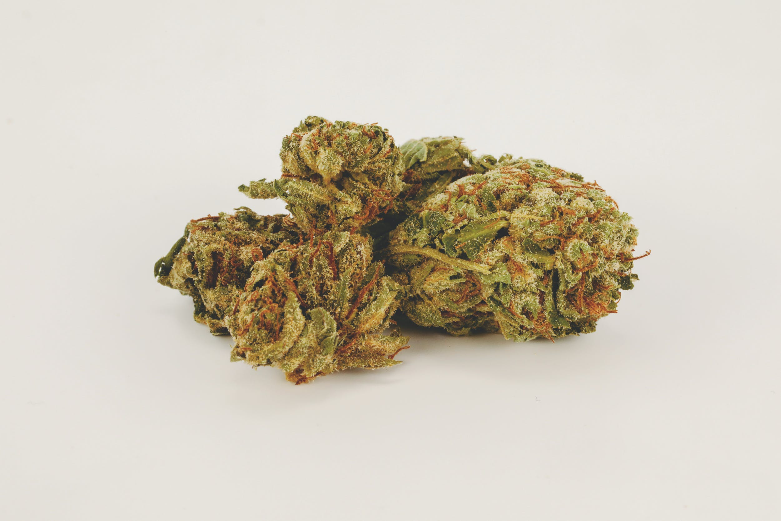 Best Kush Strains 4 These are the Best Kush Strains on the Planet