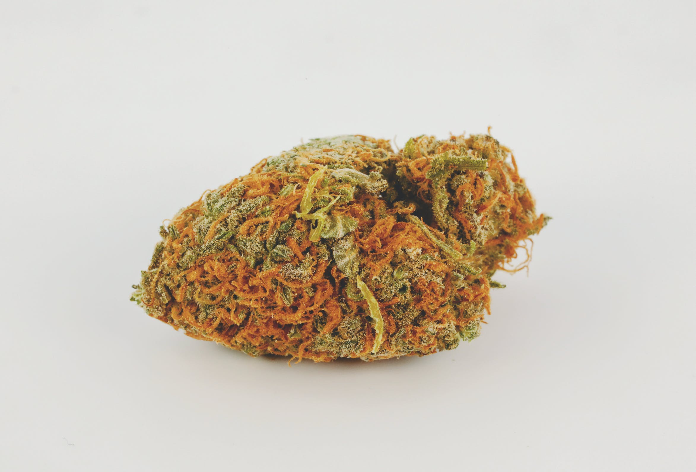 Best Kush Strains 5 These are the Best Kush Strains on the Planet